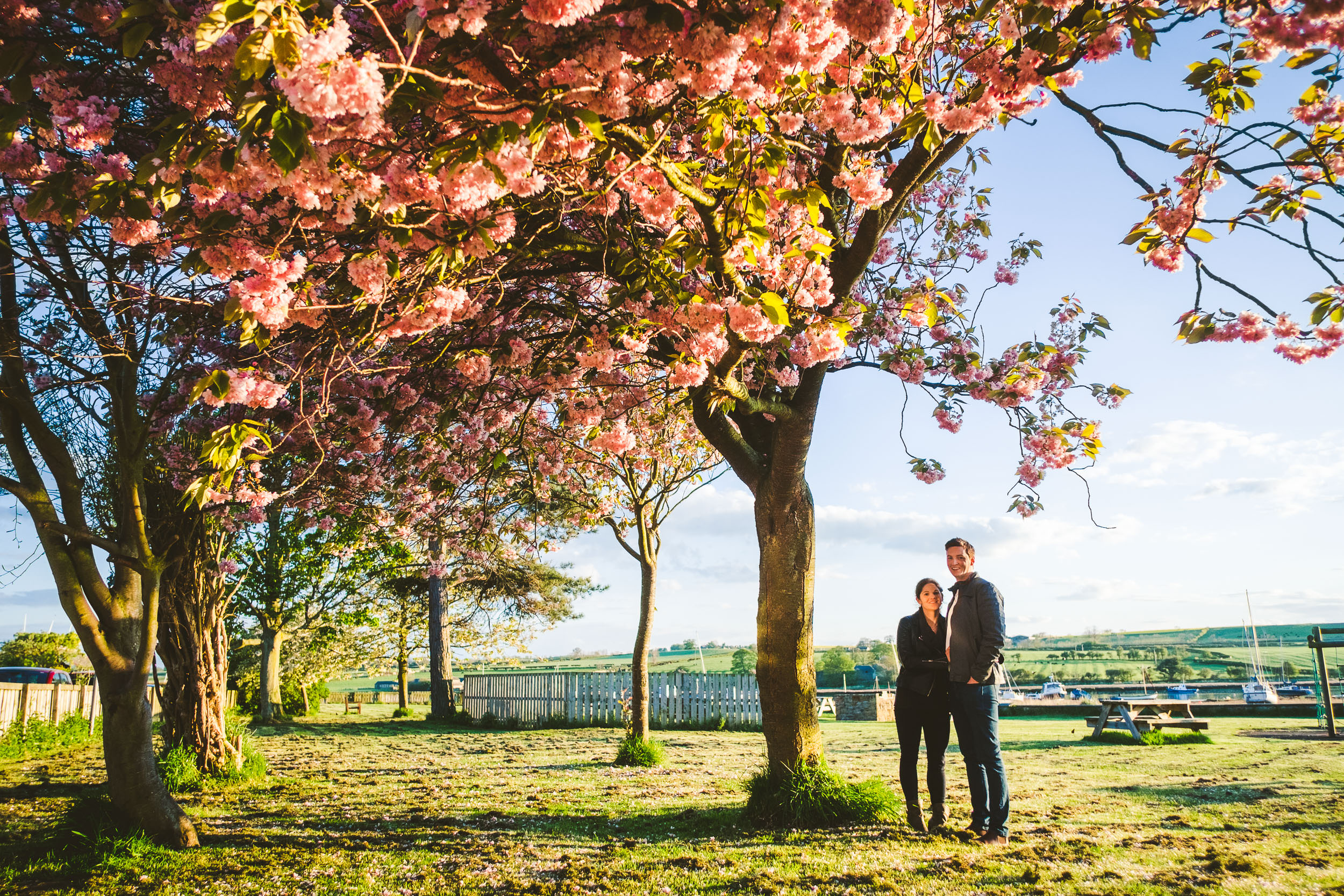 Couple cuddle near cherry blossom trees in Northumberland village