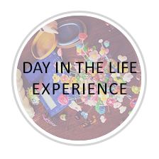 experience-DIL.png