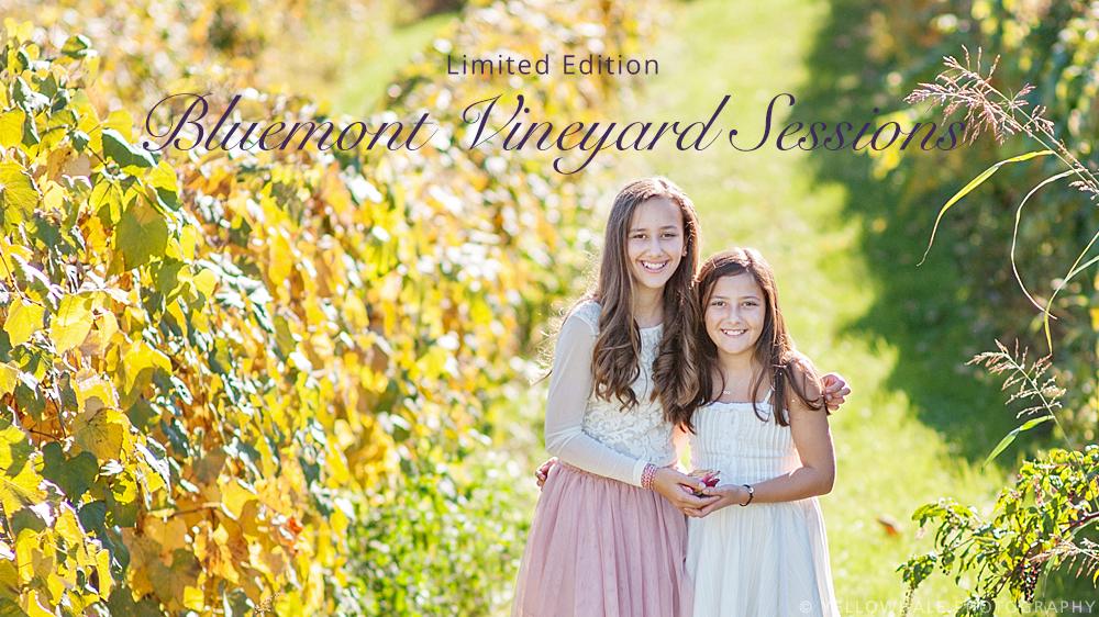 vineyard-5.jpg