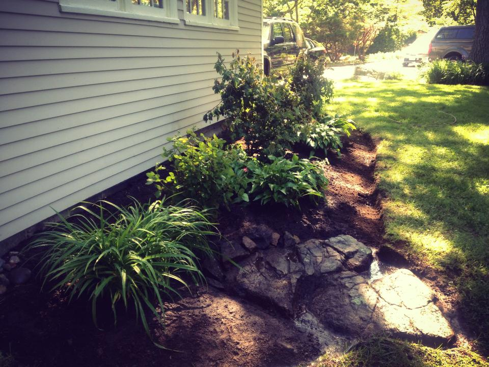 Foundation planting and bed redesign. Scituate, MA