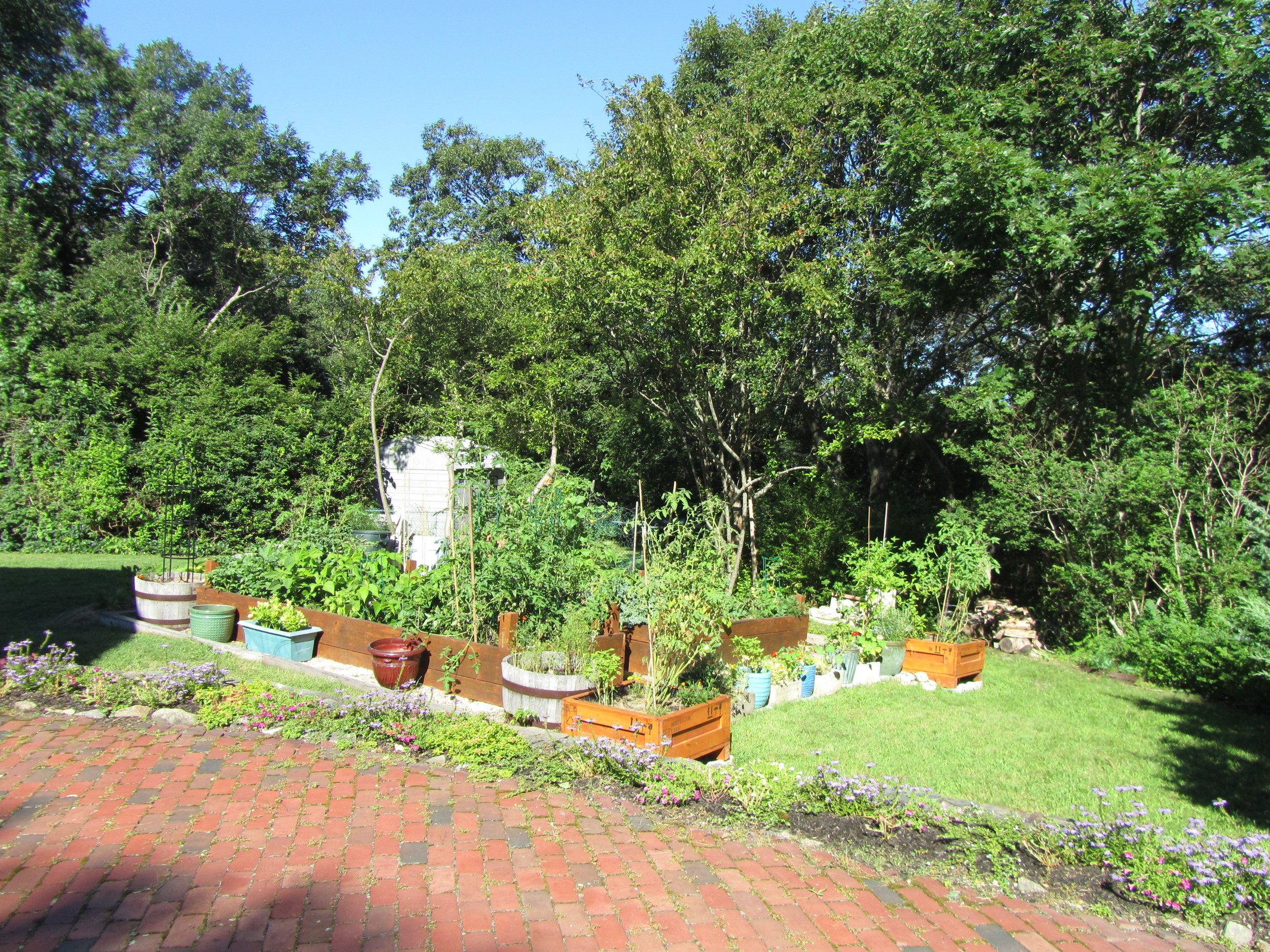 Vegetable garden. Scituate, MA