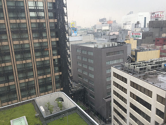View from my hotel room at the Sunroute Plaza Shinjuku (©Deborah Clague)