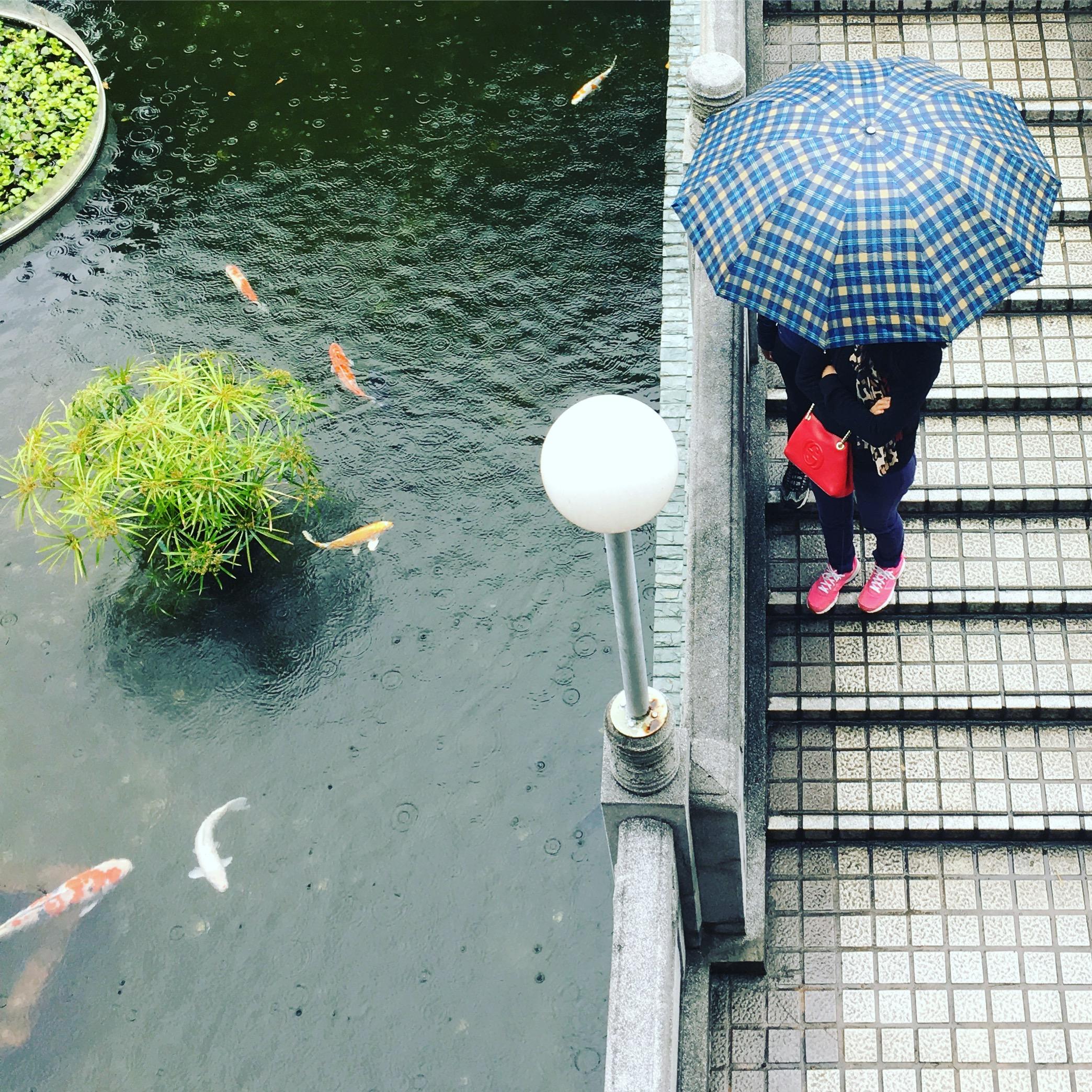 Wish Garden, Wong Tai Sin Temple (©Deborah Clague, 2018)