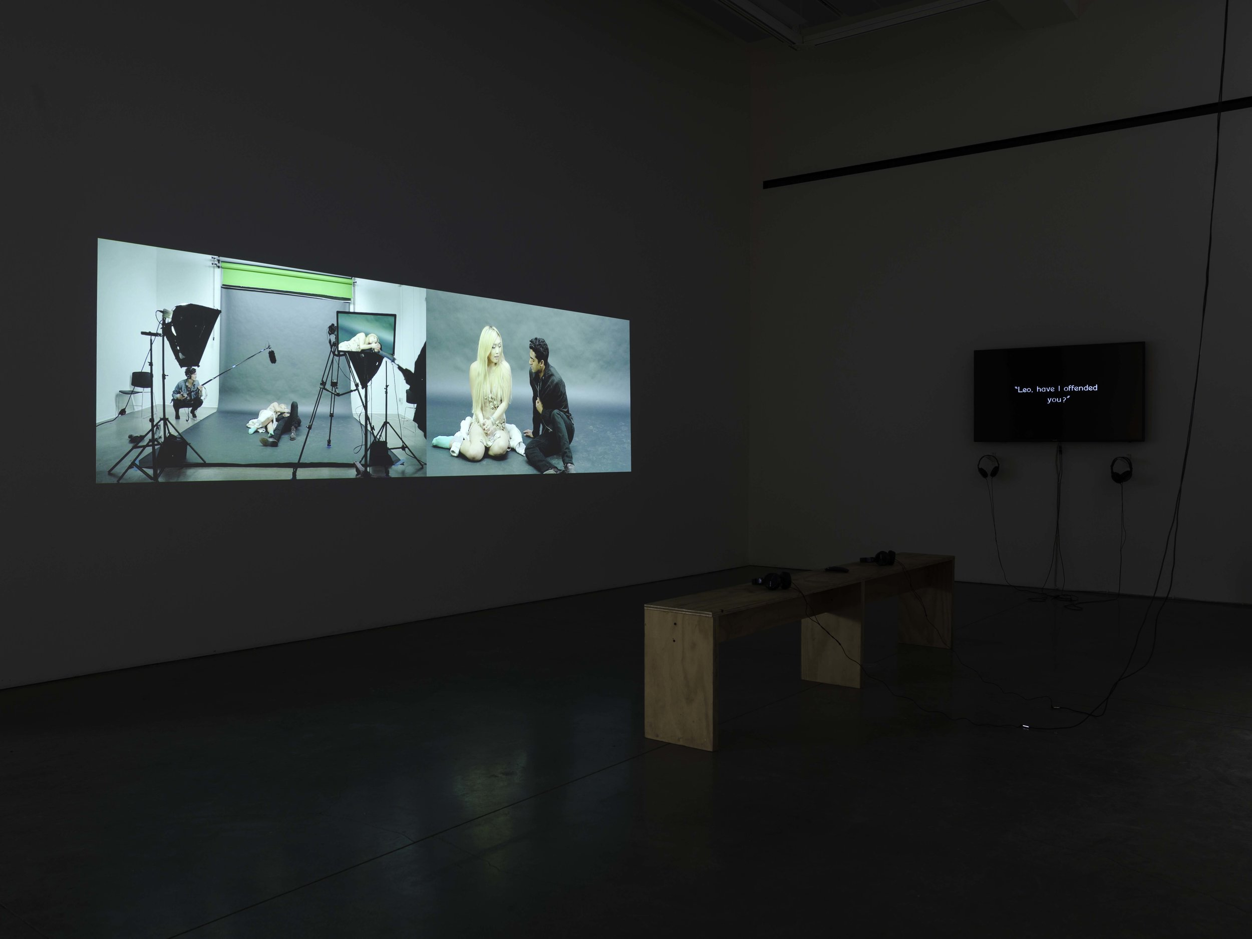 Installation view, pictured with companion piece,  aren't you afraid of what she may do to you a second time?