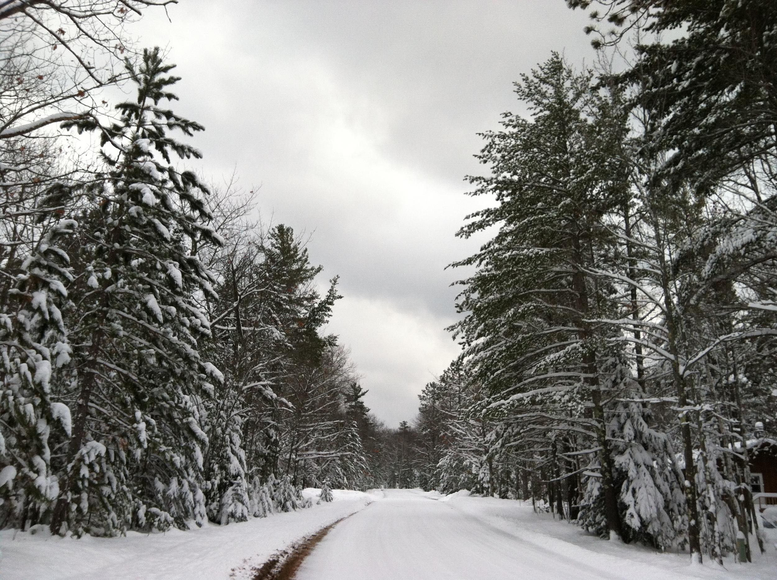 Mondamin Road Winter Scene