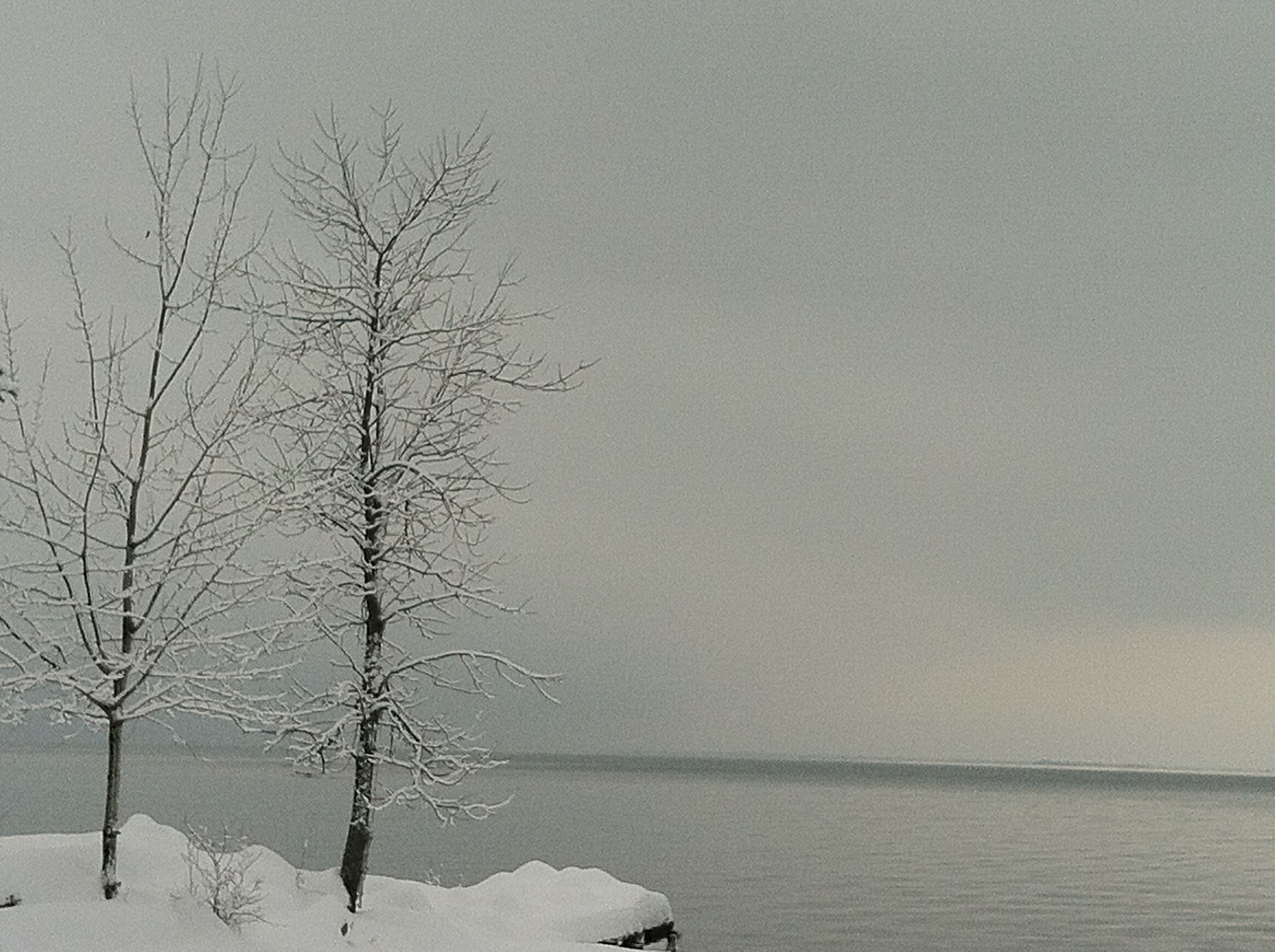Grant's Point in Winter