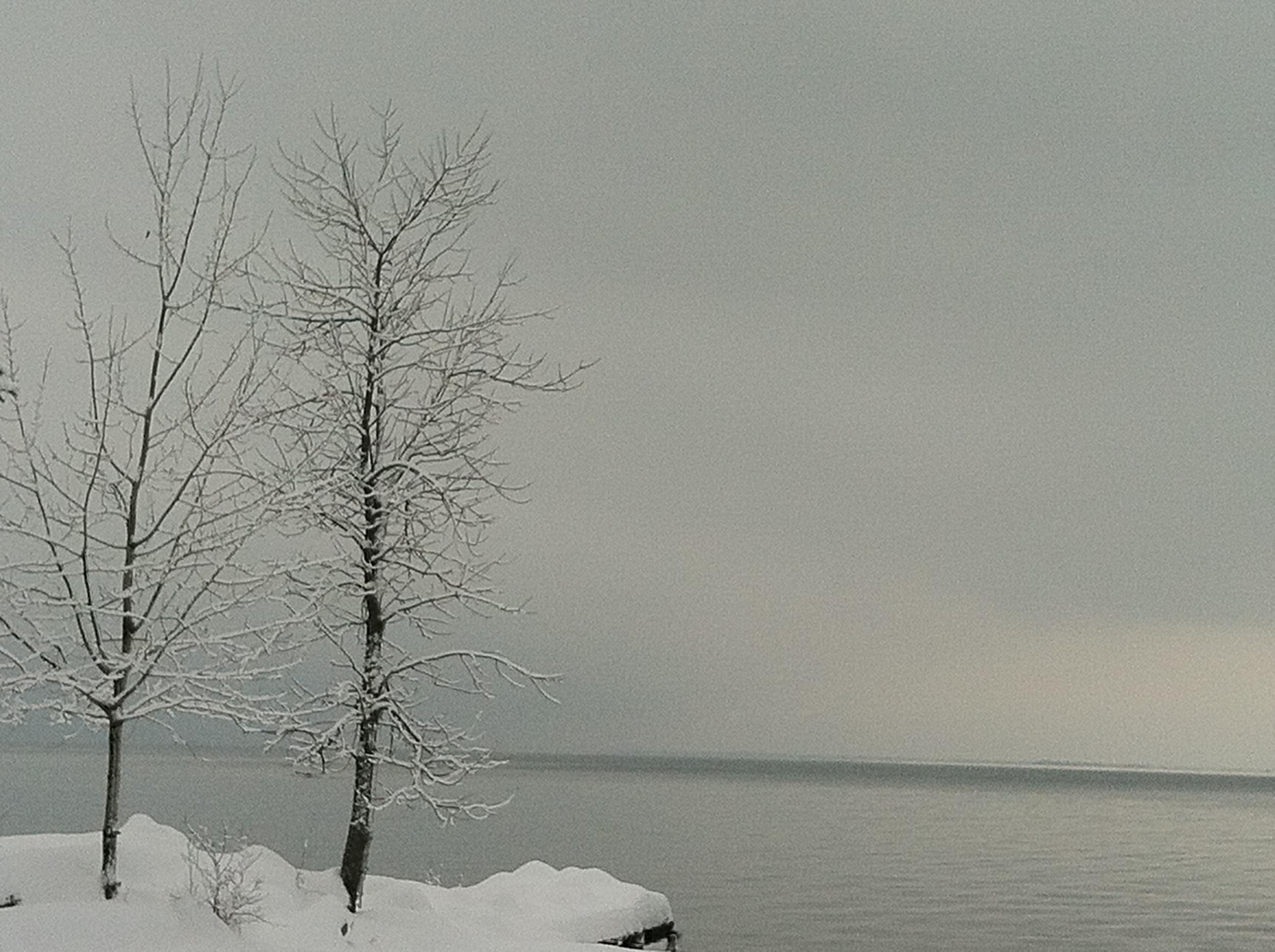 Grants Point Winter.jpg
