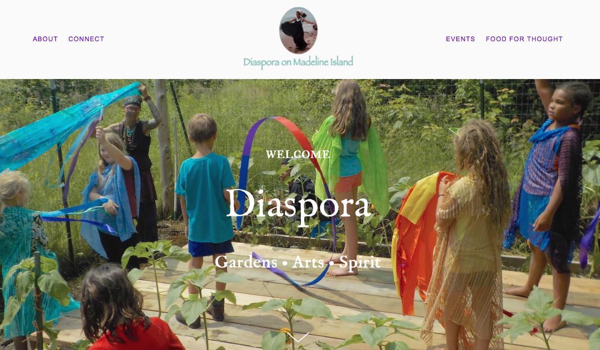 Diaspora Home page.png