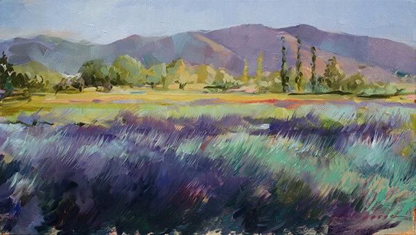 Lavender Fields lores.jpg