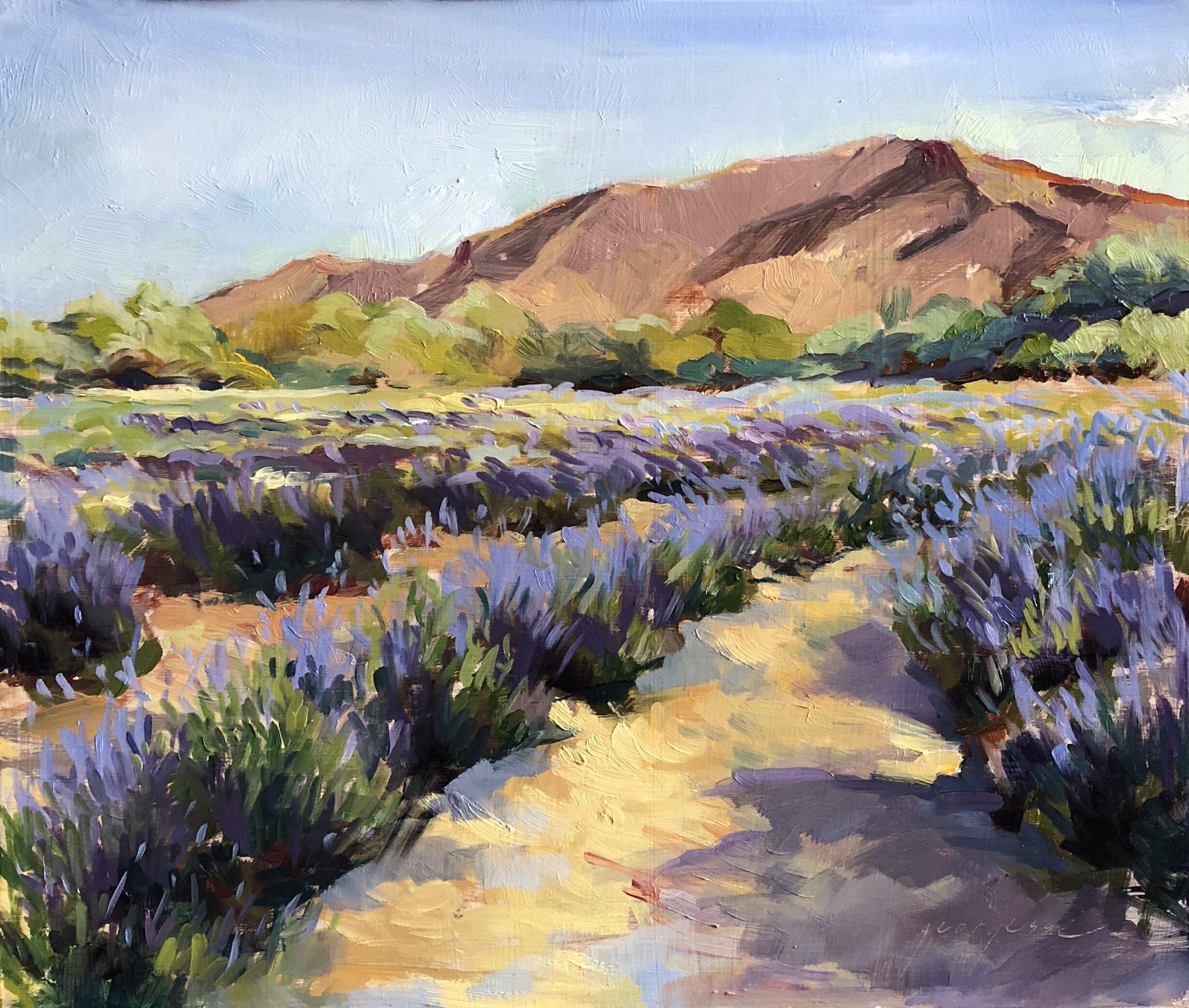 Lavender Fields2.jpg