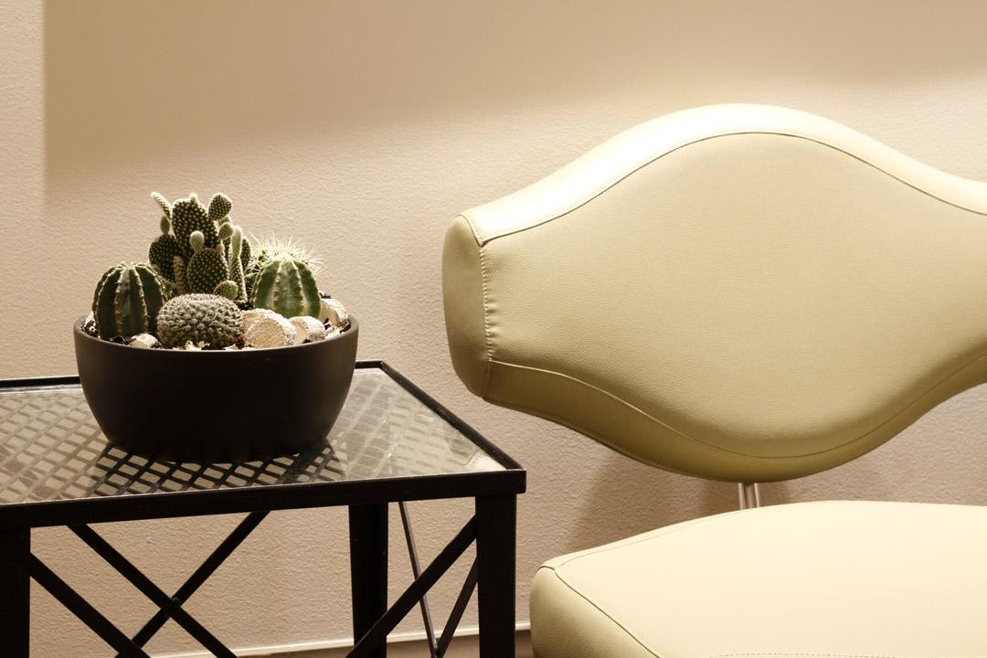 corporate_succulent.jpg
