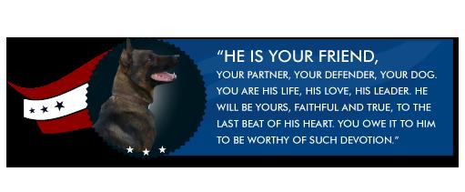 warrior-dog-foundation-welcome.png