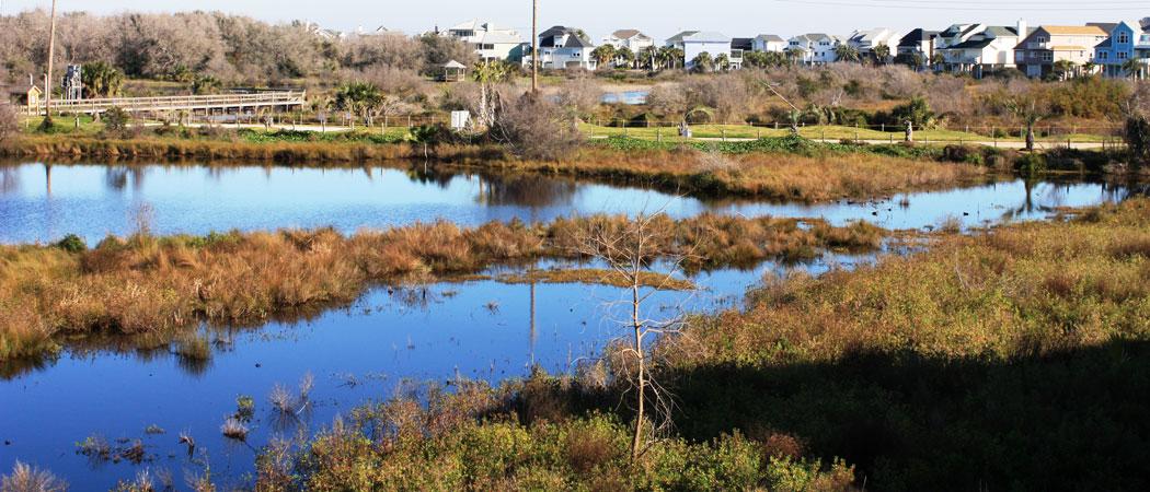 Lafitte's Cove Nature Preserve in Galveston, Texas. Image via  drive-discover.com