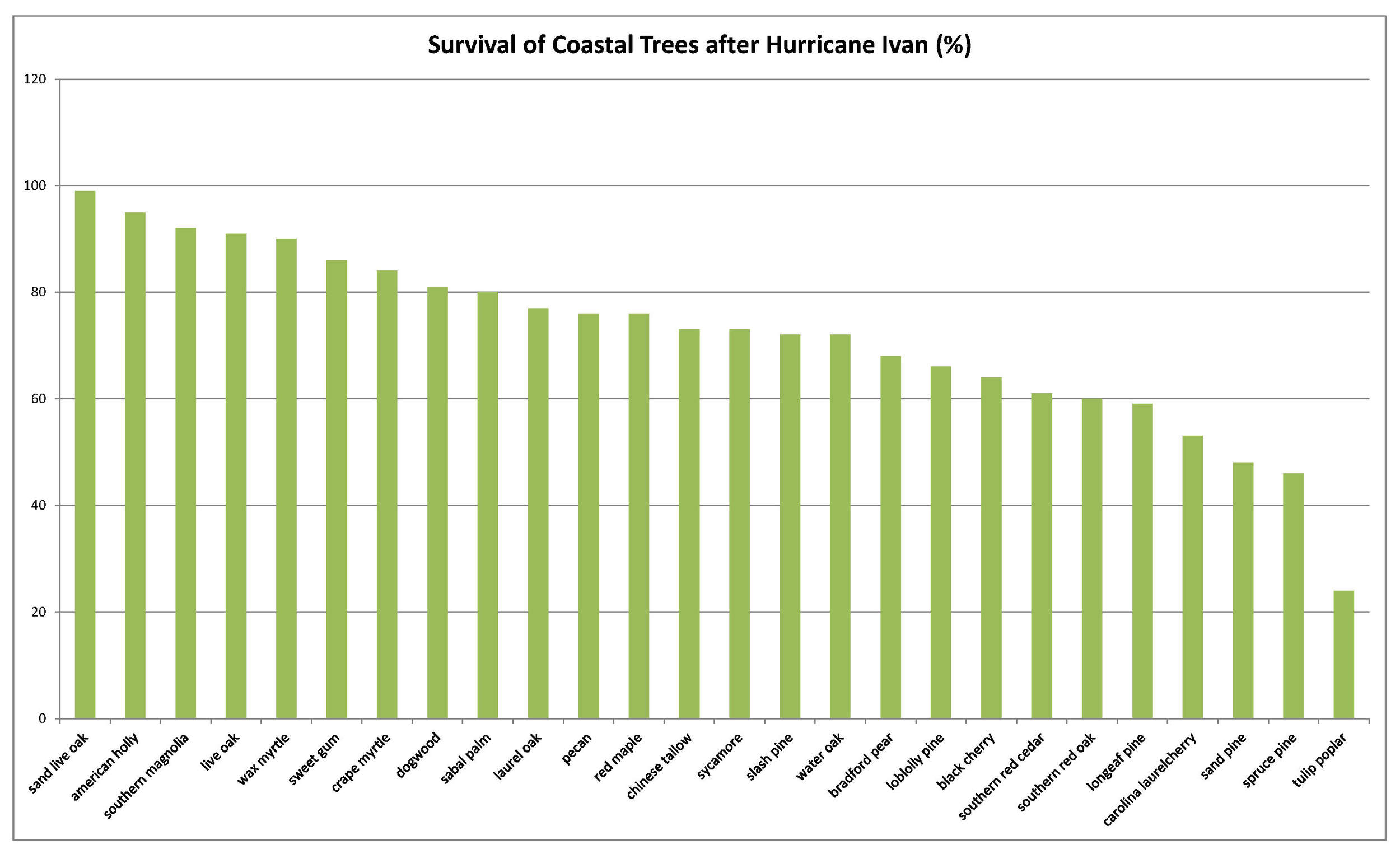 tree-survival-hurricane-ivan