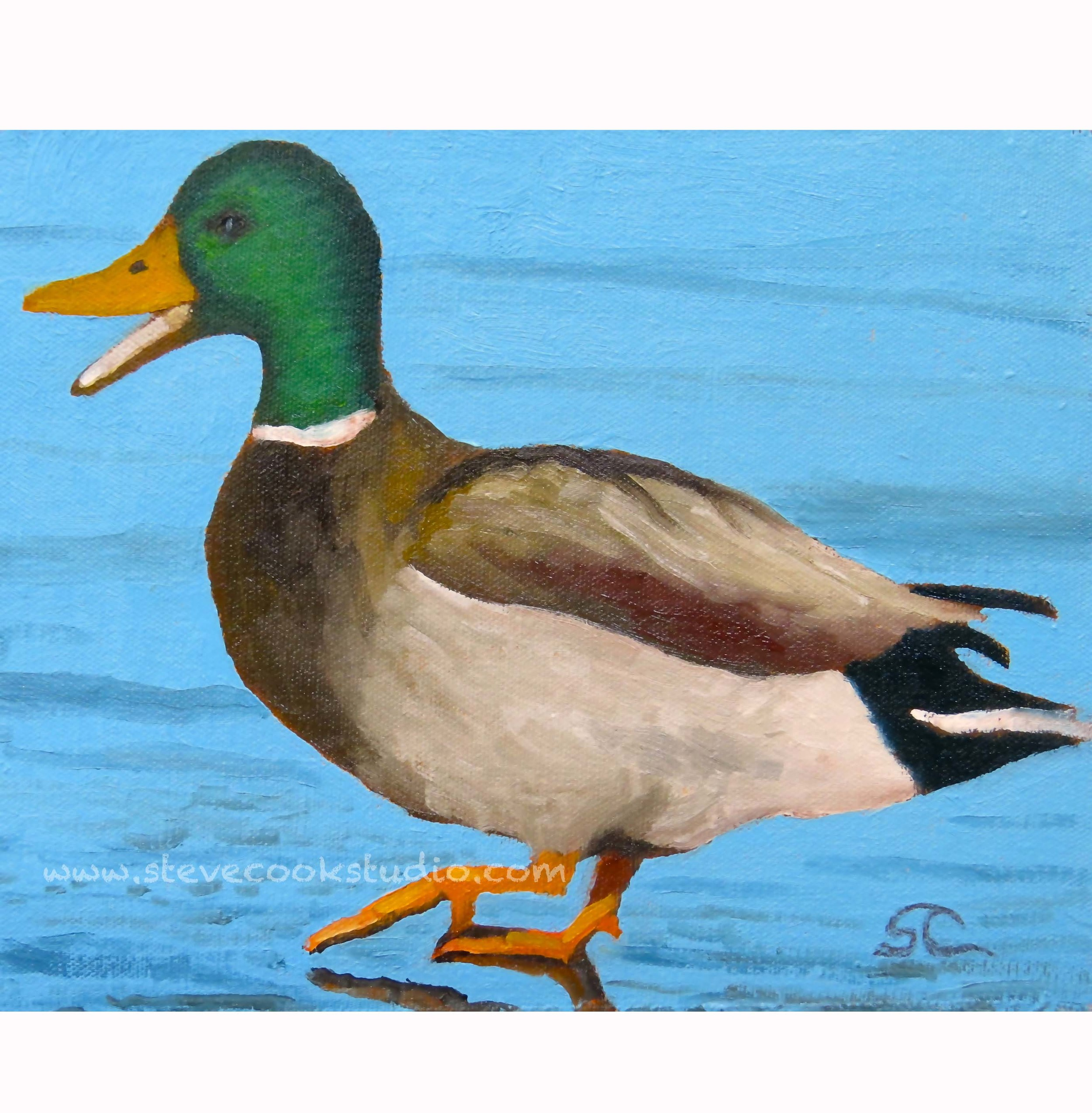 """Duck!"" oil on canvas panel 8 x 10"