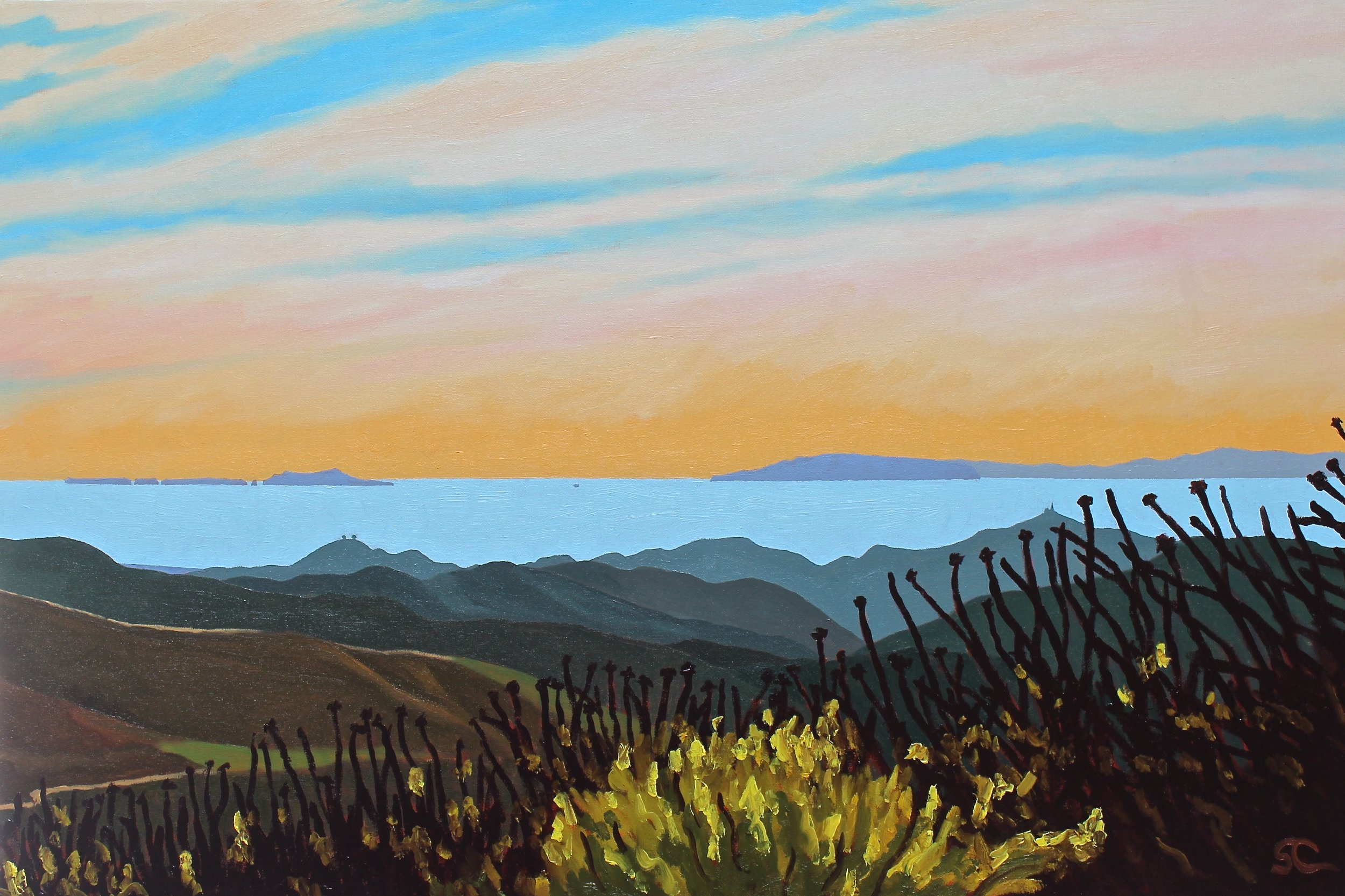 """""""From the Top of Harmon Canyon"""" oil on canvas 24 x 36.  Fund raising donation for Ventura Hillsides Conservancy"""