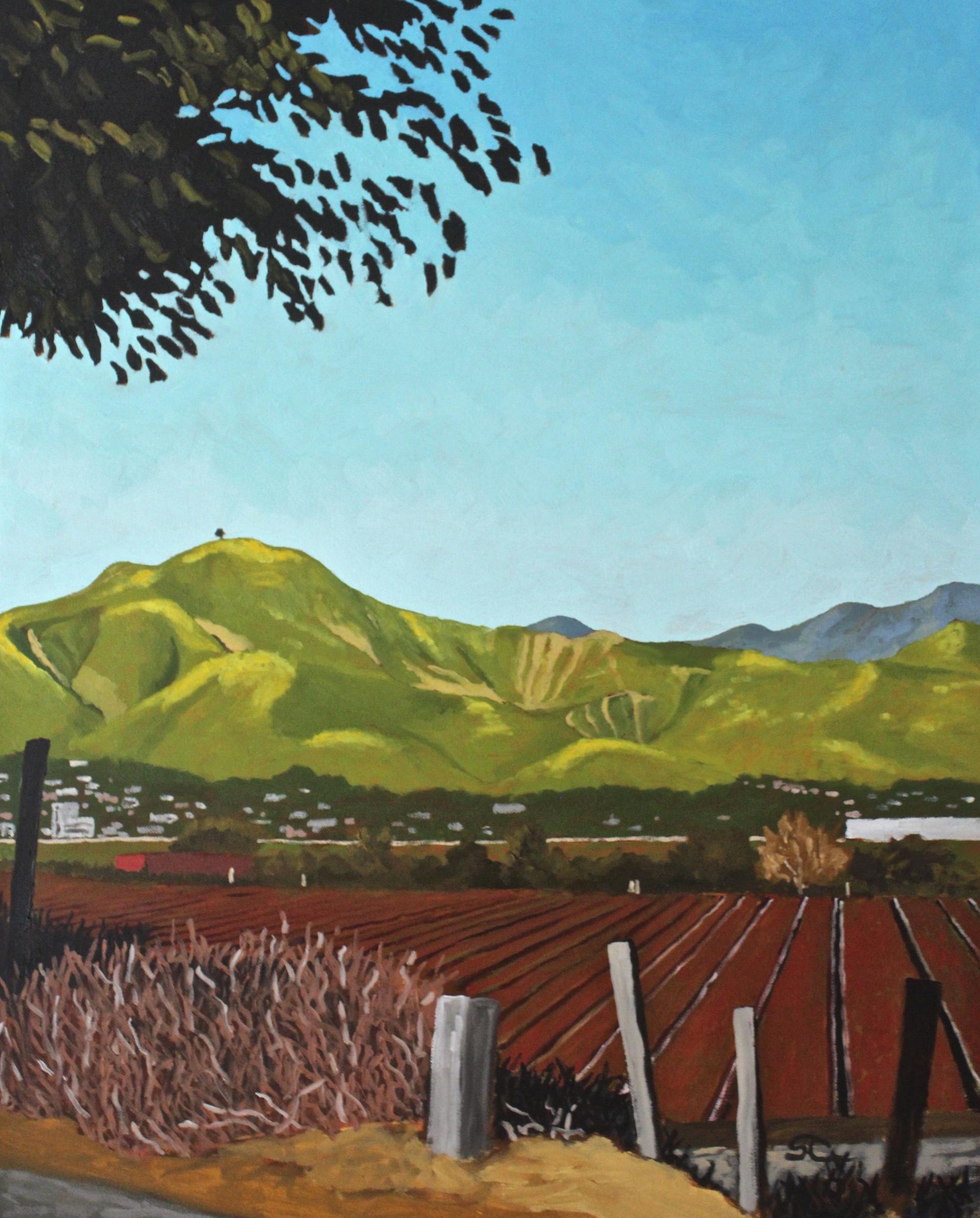 """Springtime Strawberry Fields"" oil on canvas 24x30"