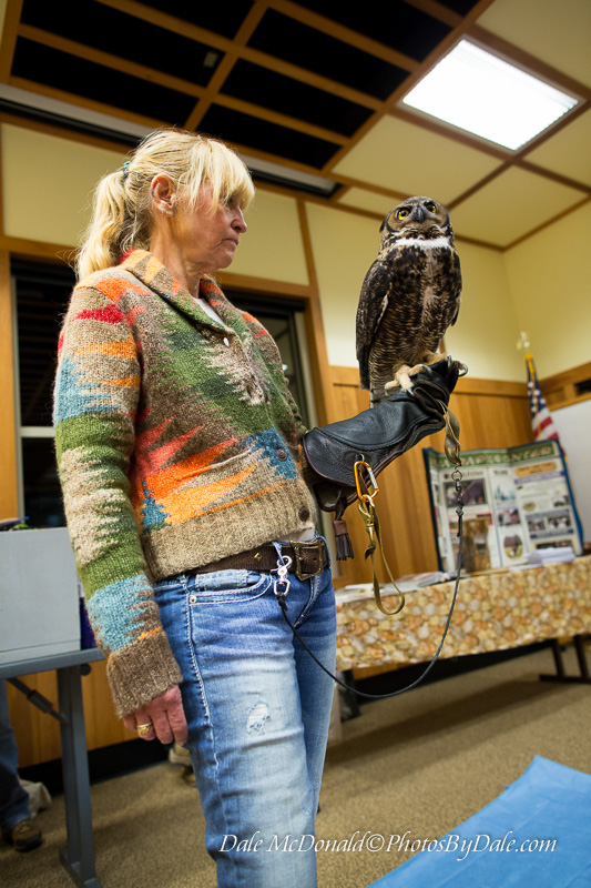 Handler with the Great Horned Owl
