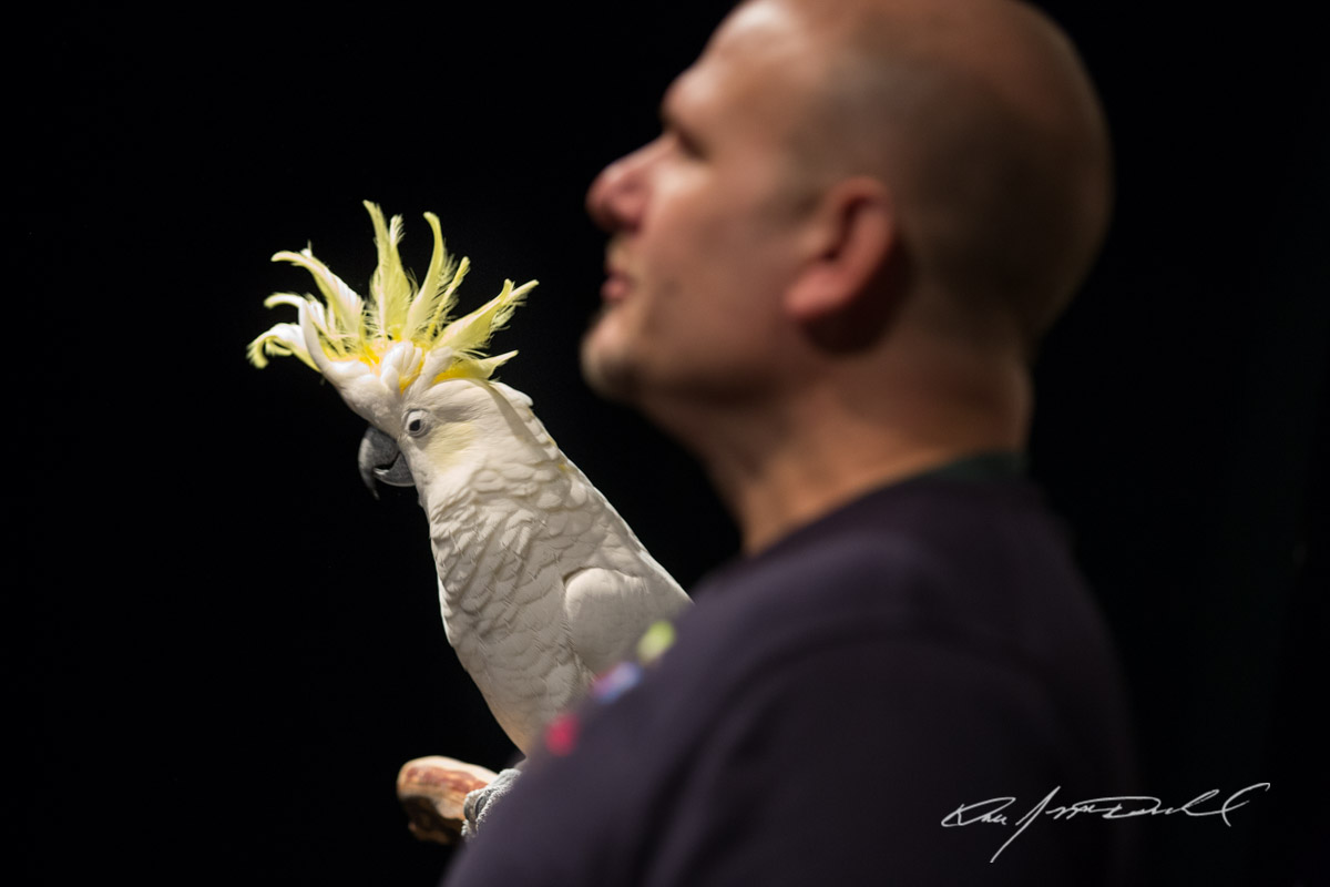 CSZ-Animal-Attractions-5D3A_9910-Edit.jpg