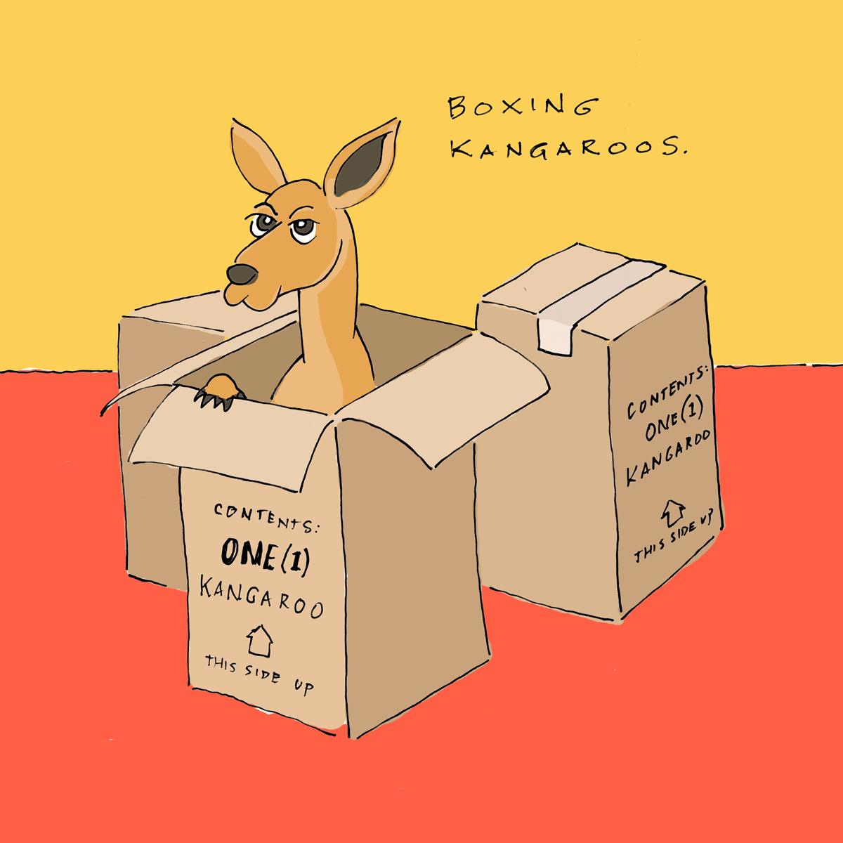 Boxing-Kanagroos-97.png