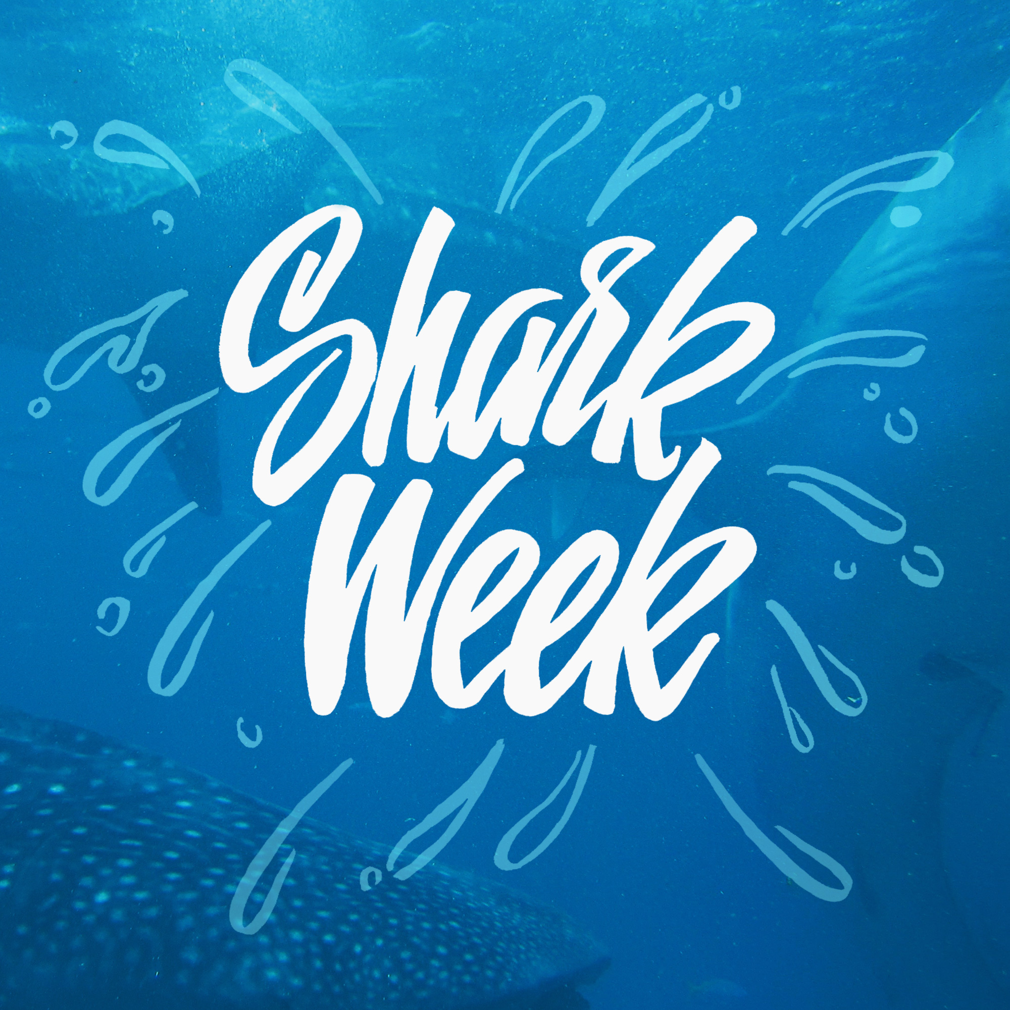 shark week by johnsuder.jpg