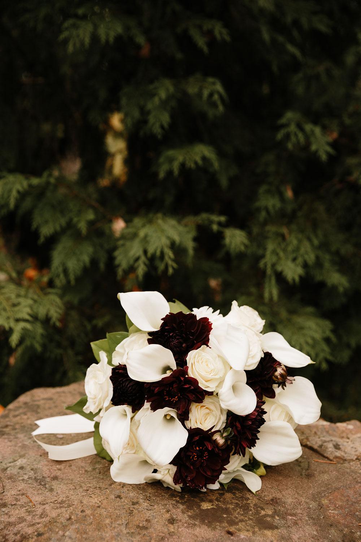 columbus-ohio-wedding-photographers-landolls-mohican-castle-central-ohio-fall-outdoor-wedding-4.jpg