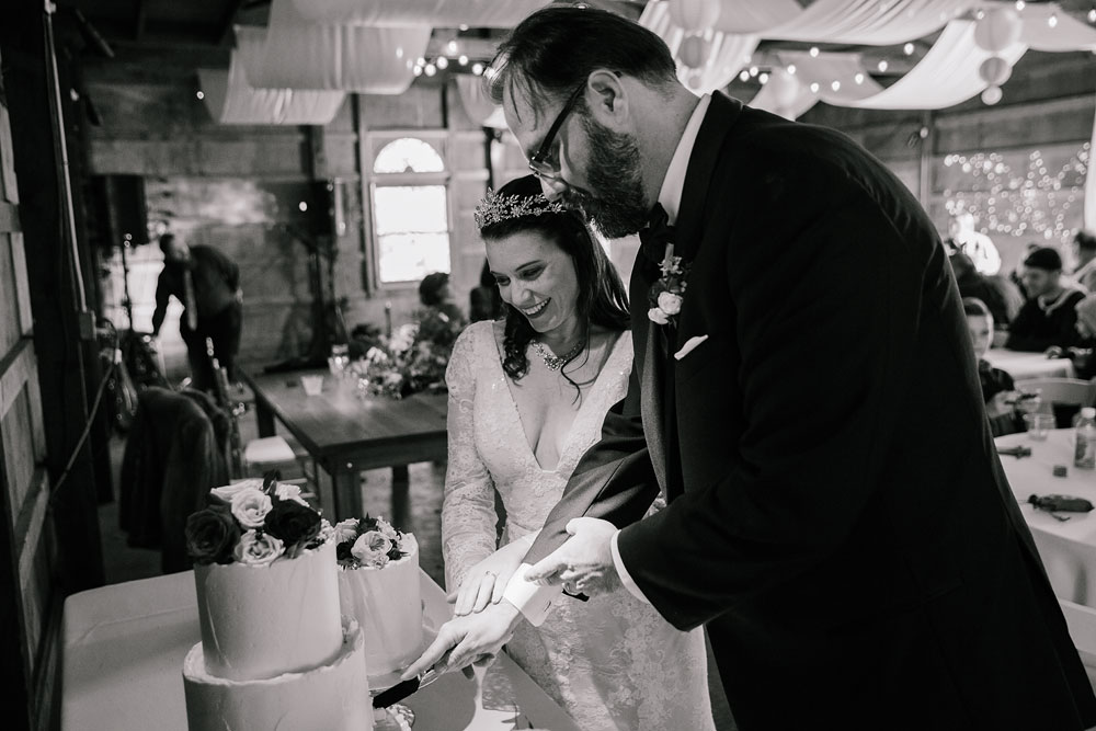 cuyahoga-valley-national-park-wedding-photographers-cleveland-ohio-hines-hill-conference-center-102.jpg