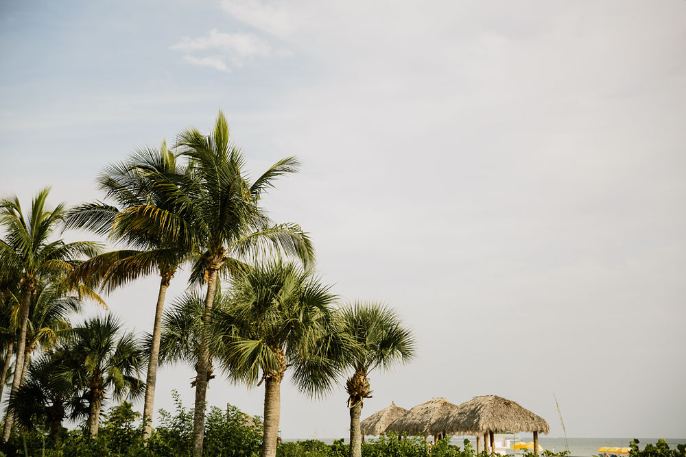 palm trees near beach at destination wedding  at Pink Shell Resort in Fort Myers Beach, FL