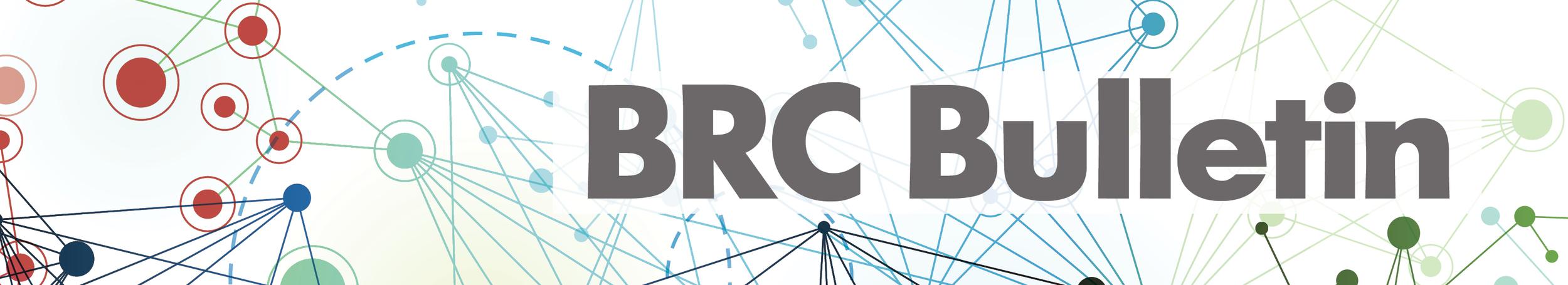 BRC Bulletin V2.jpg
