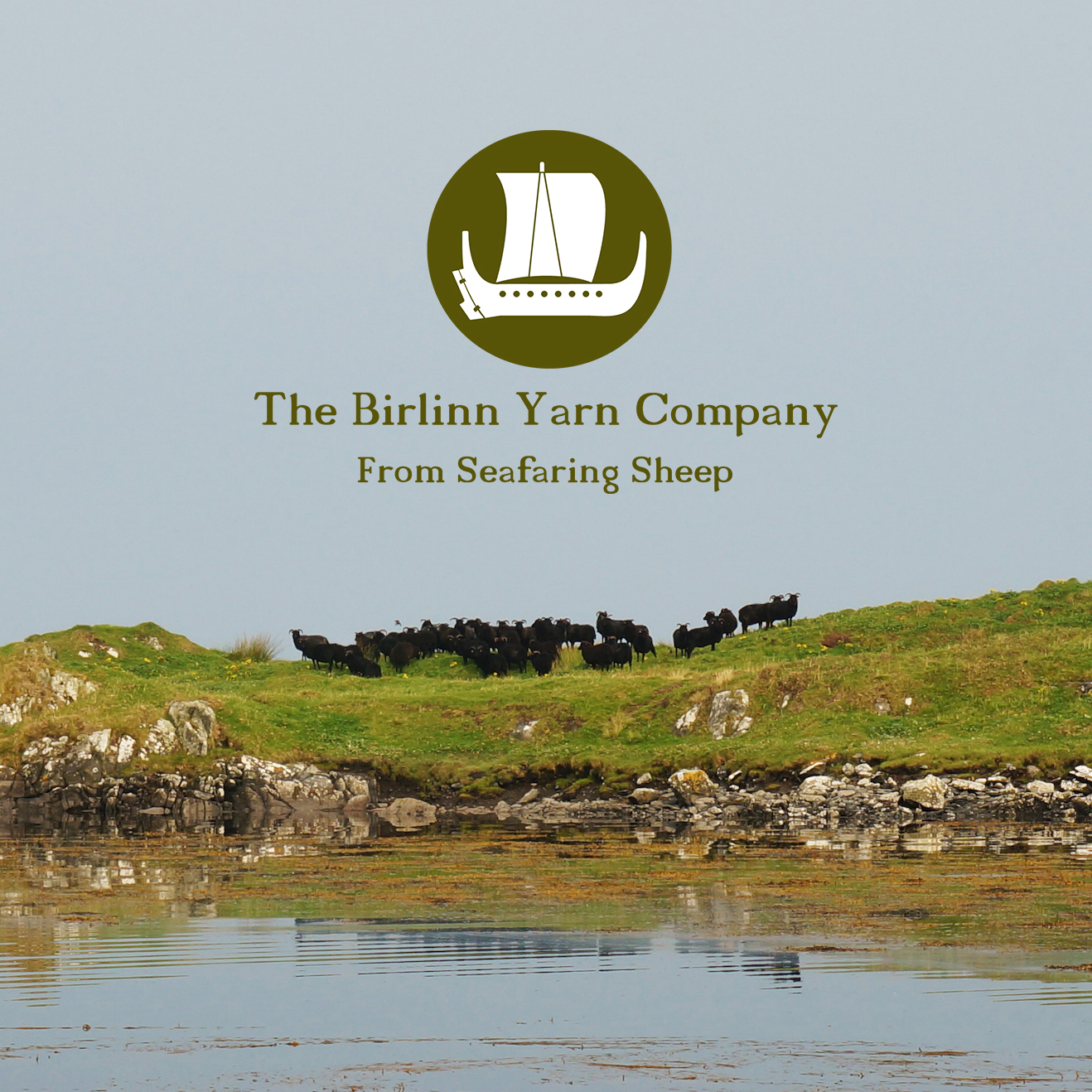 The Birlinn Yarn Company   Yarn and sheepskins from seafaring Hebridean sheep bred in the Outer Hebrides, Scotland. Yarns in natural shades and delicate Hebridean colours. All our products, like our Hebridean sheep, are rare and small in number. Sustainably produced, they glean their aesthetic qualities from the Hebridean landscape and culture.