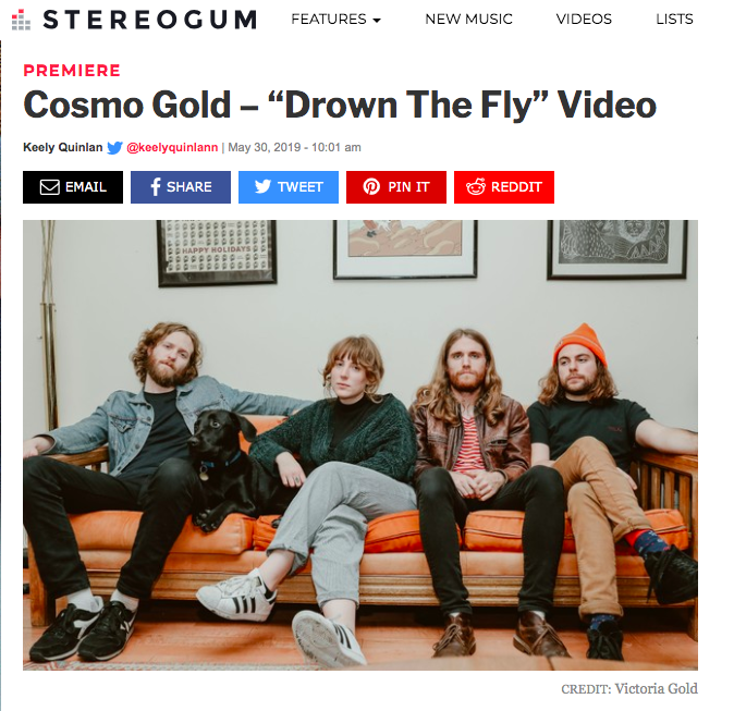 drown the fly stereogum
