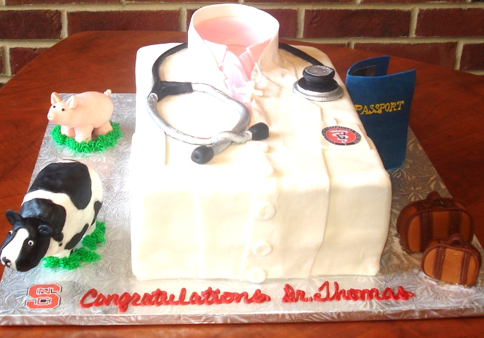 Sculpted cake with accompanying hand-made figurines for a veterinary school grad