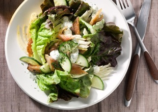 mare_smoked_trout_fennel_and_cucumber_salad_with_creamy_dill_dressing_v.jpg