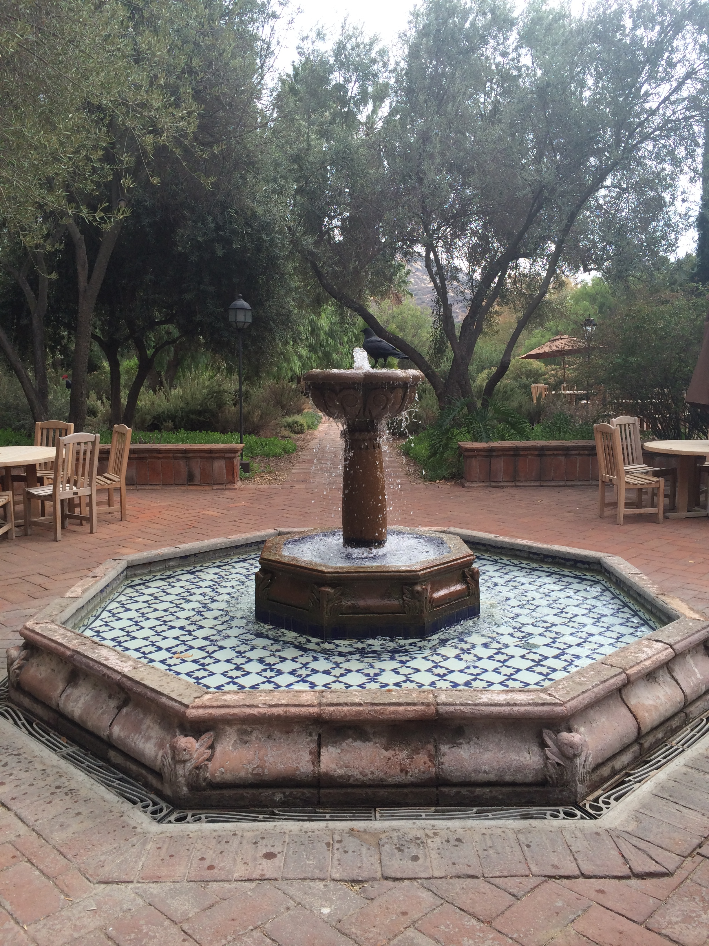 The fountain in the dining room patio