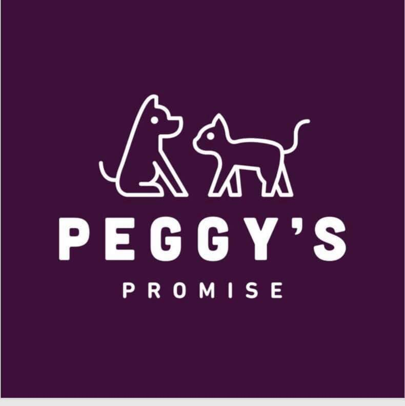 Raising much needed funds to help Peggy's Promise continue their amazing work. -
