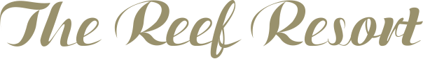 reef logo whole name only.png