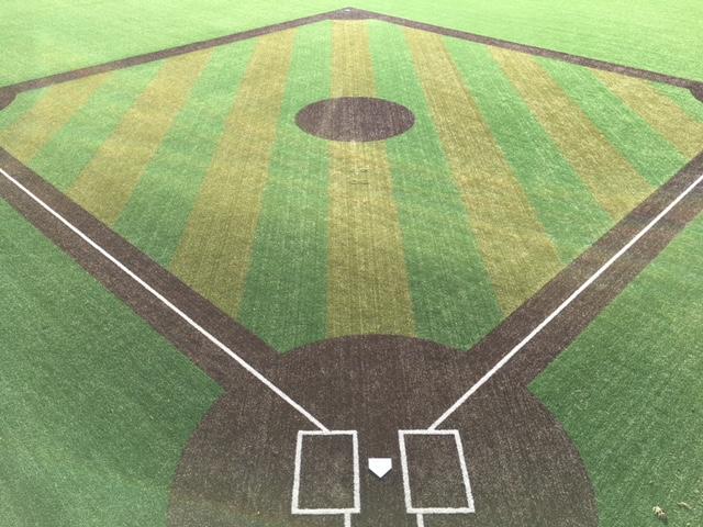 Baseball Infield.jpg