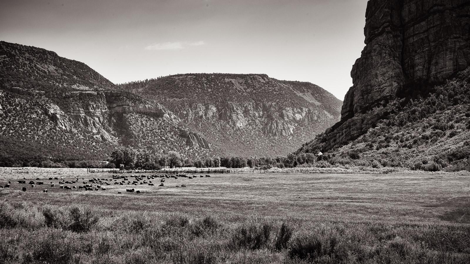 Canyon Ranch 2