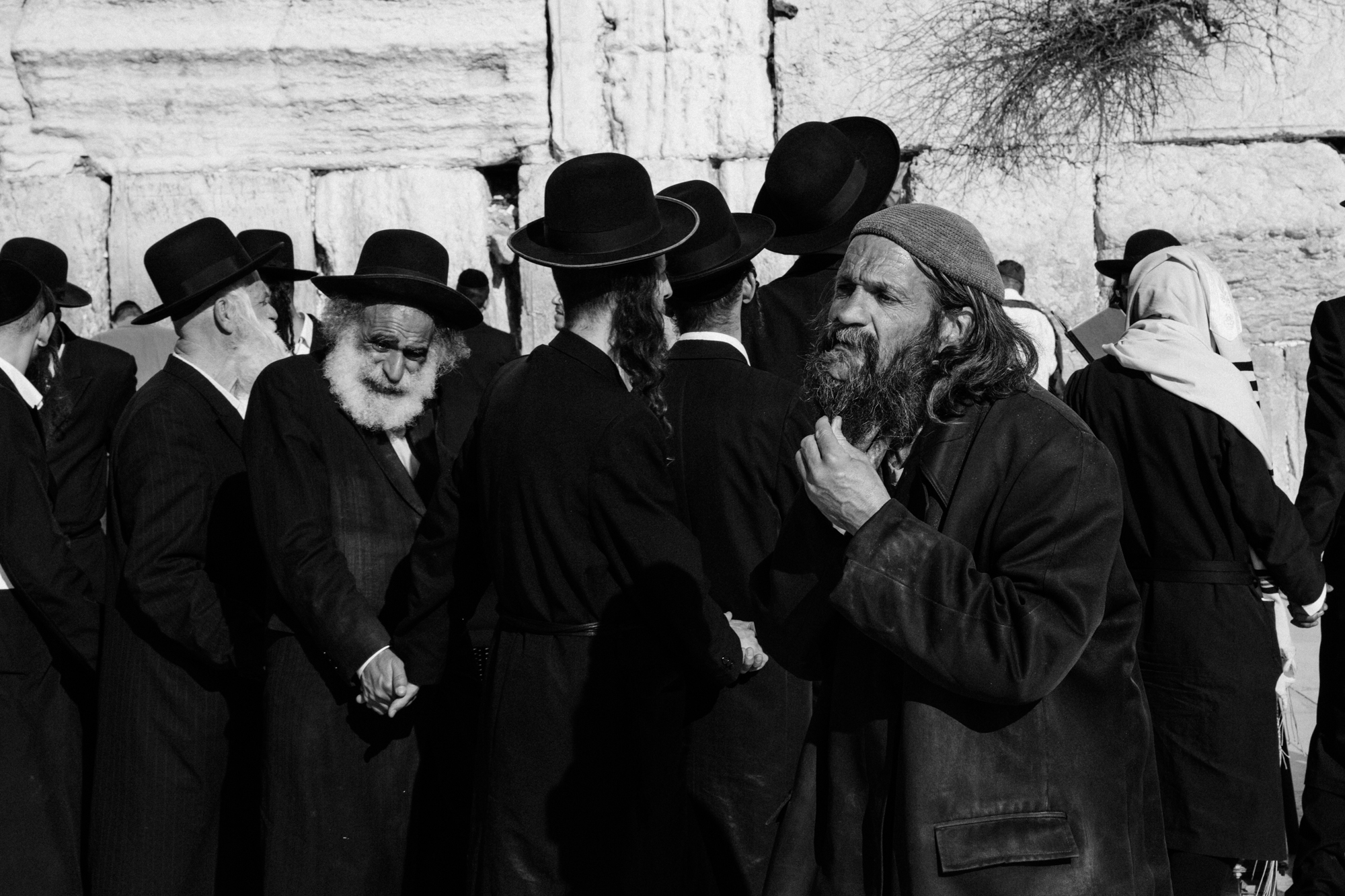 wailing wall, israel.   israel collective