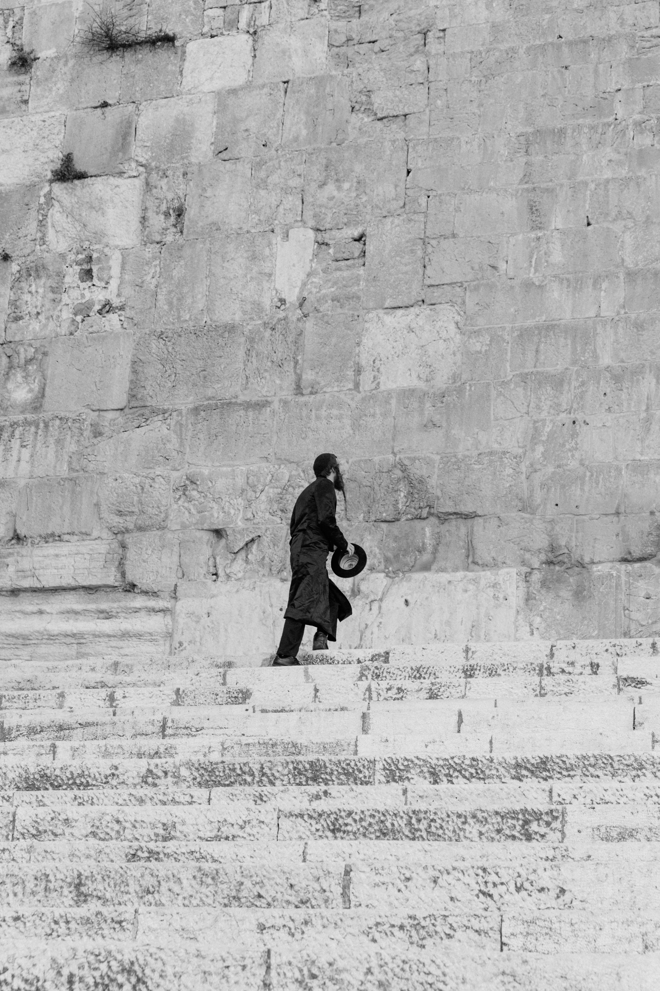 southern steps, israel.   israel collective