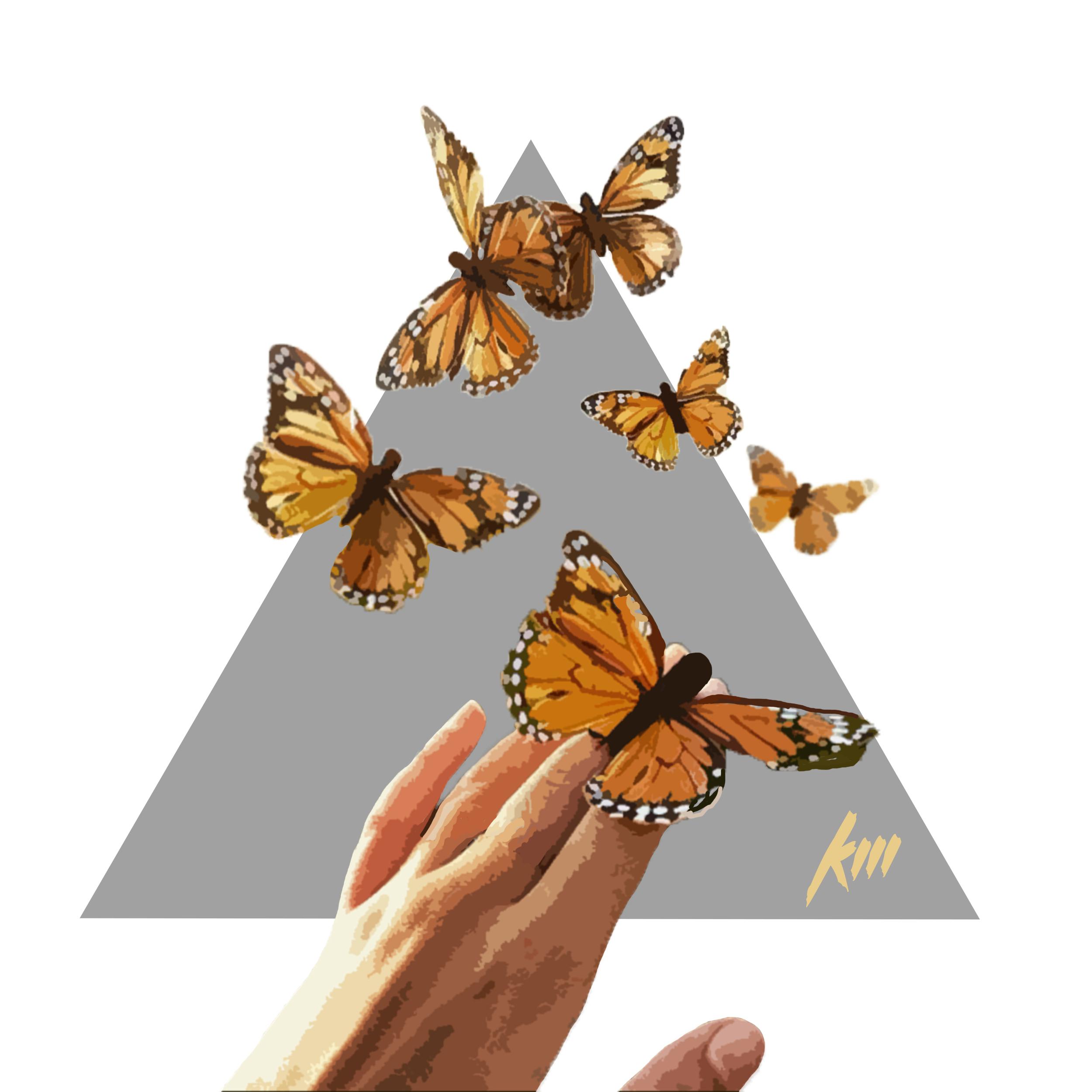 ButterflyEffect.jpg