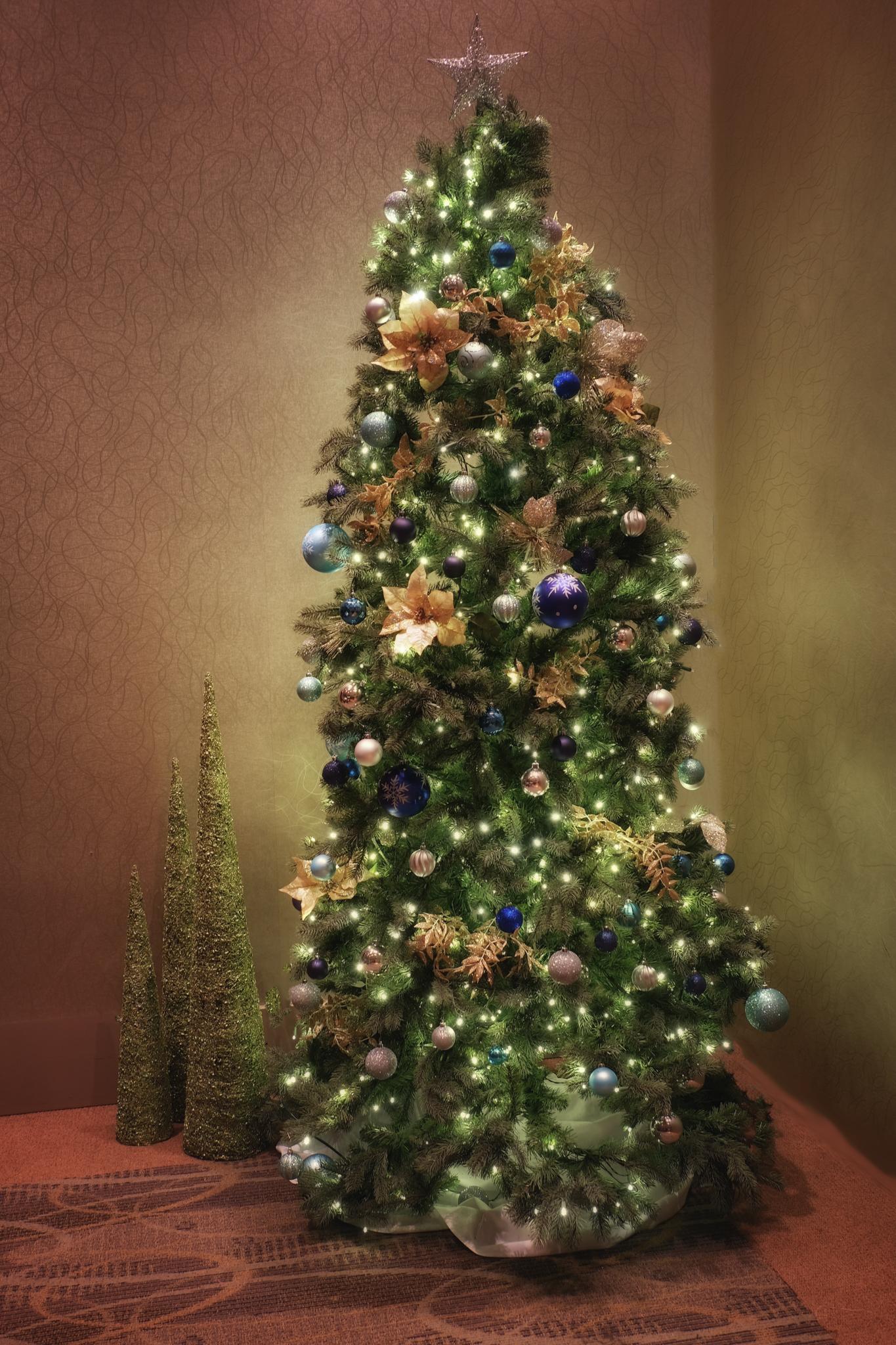 Oh, Christmas Tree...