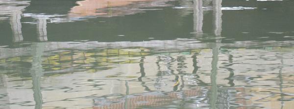 EL013Boat_Light600x224.200dpi.jpg