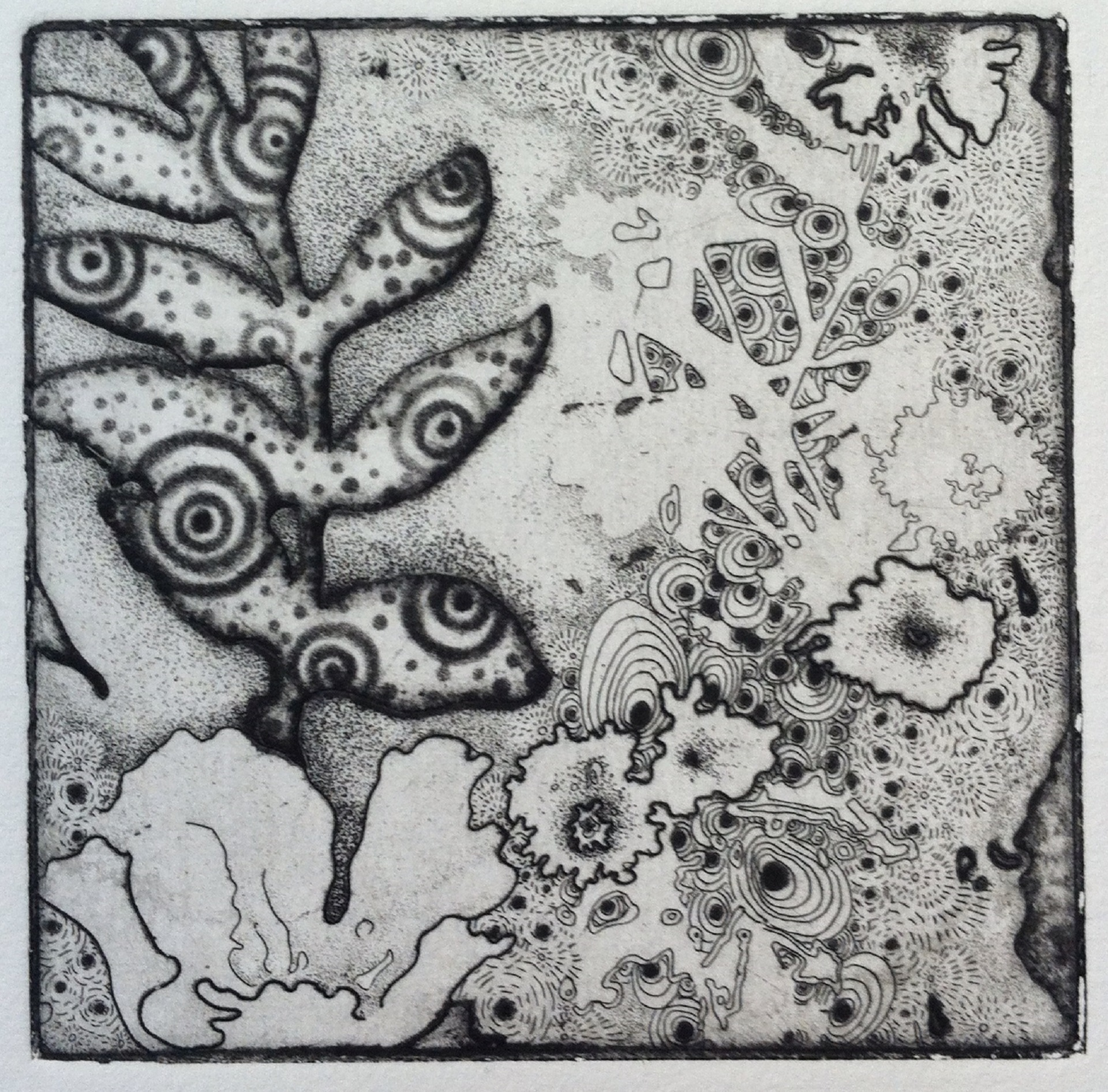 """Joshua Butler, Liminal Wild Roses and Leaf Portal, 4""""X4"""" Intalio"""
