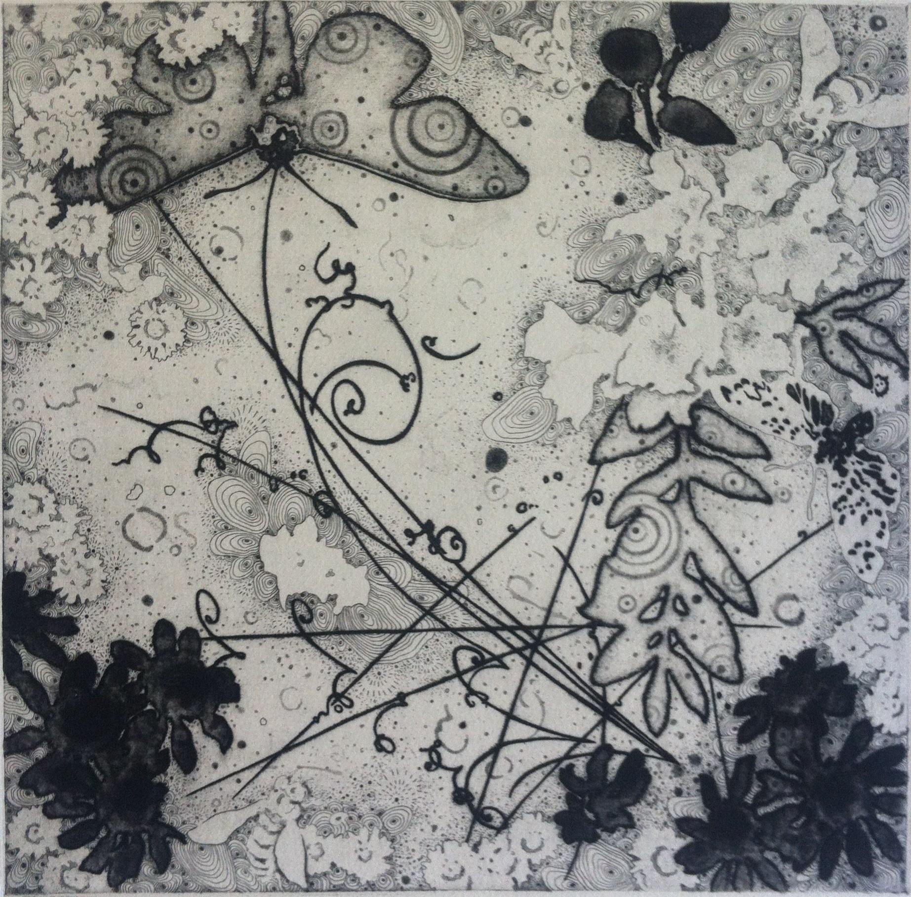 "Joshua Butler, Hakomi 5: Bees and Moths Visit the Hadron Collider, Etching, 12""X12"""