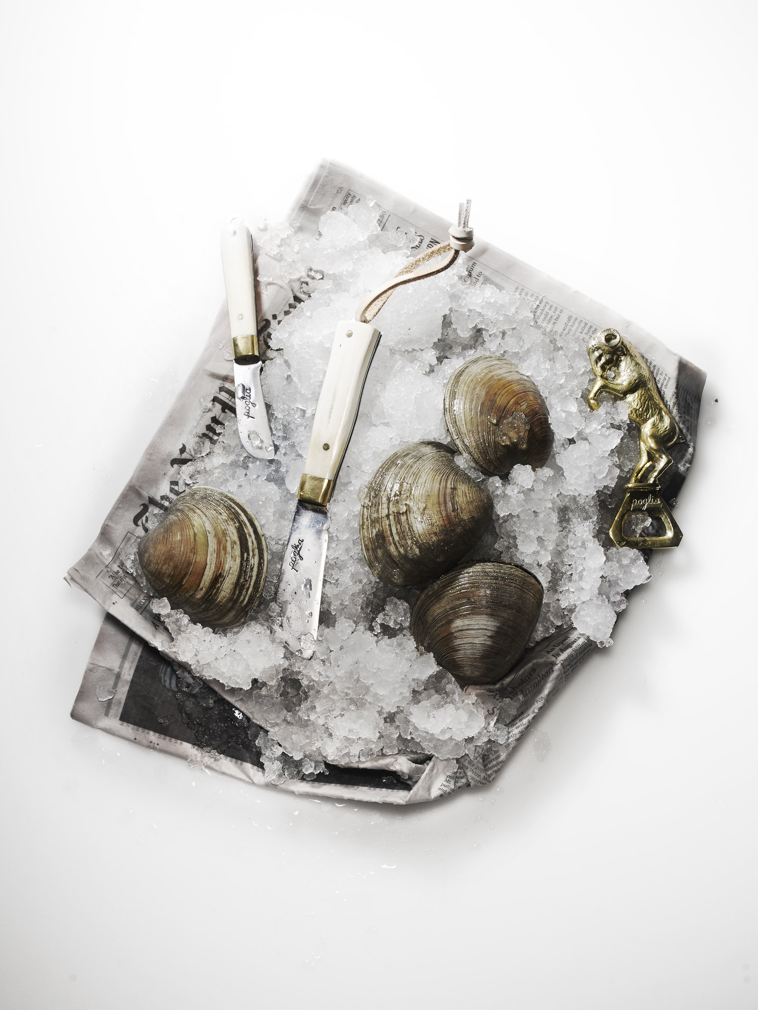Poglia Oysters.jpg