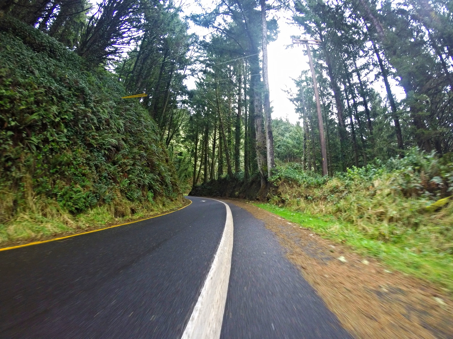 Just out of Depoe Bay there are bike route signs that take you off the 101 to this little gem of a road!