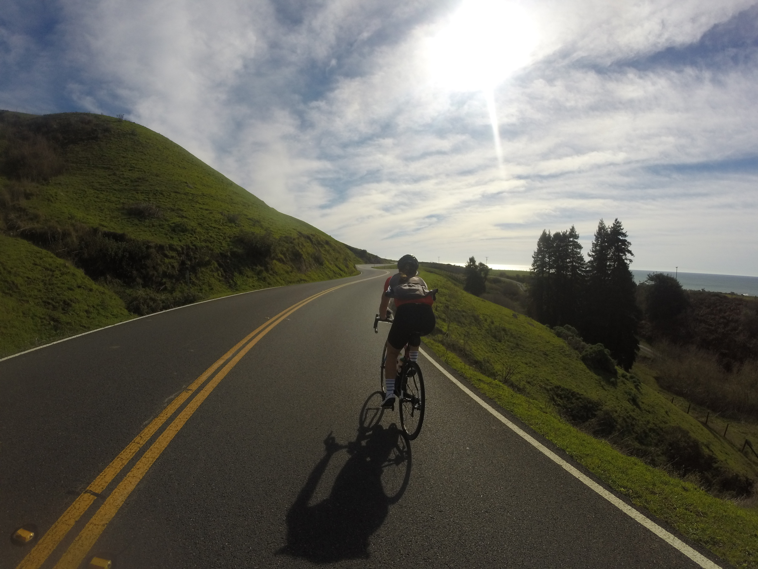 Once you get within 10 miles of Jenner everything turns green, twisty, and incredible! Such a beautiful stretch of road, and all the climbing to get to Jenner is made worth it by the treats and coffee you get to eat at Cafe Aquatica! :)