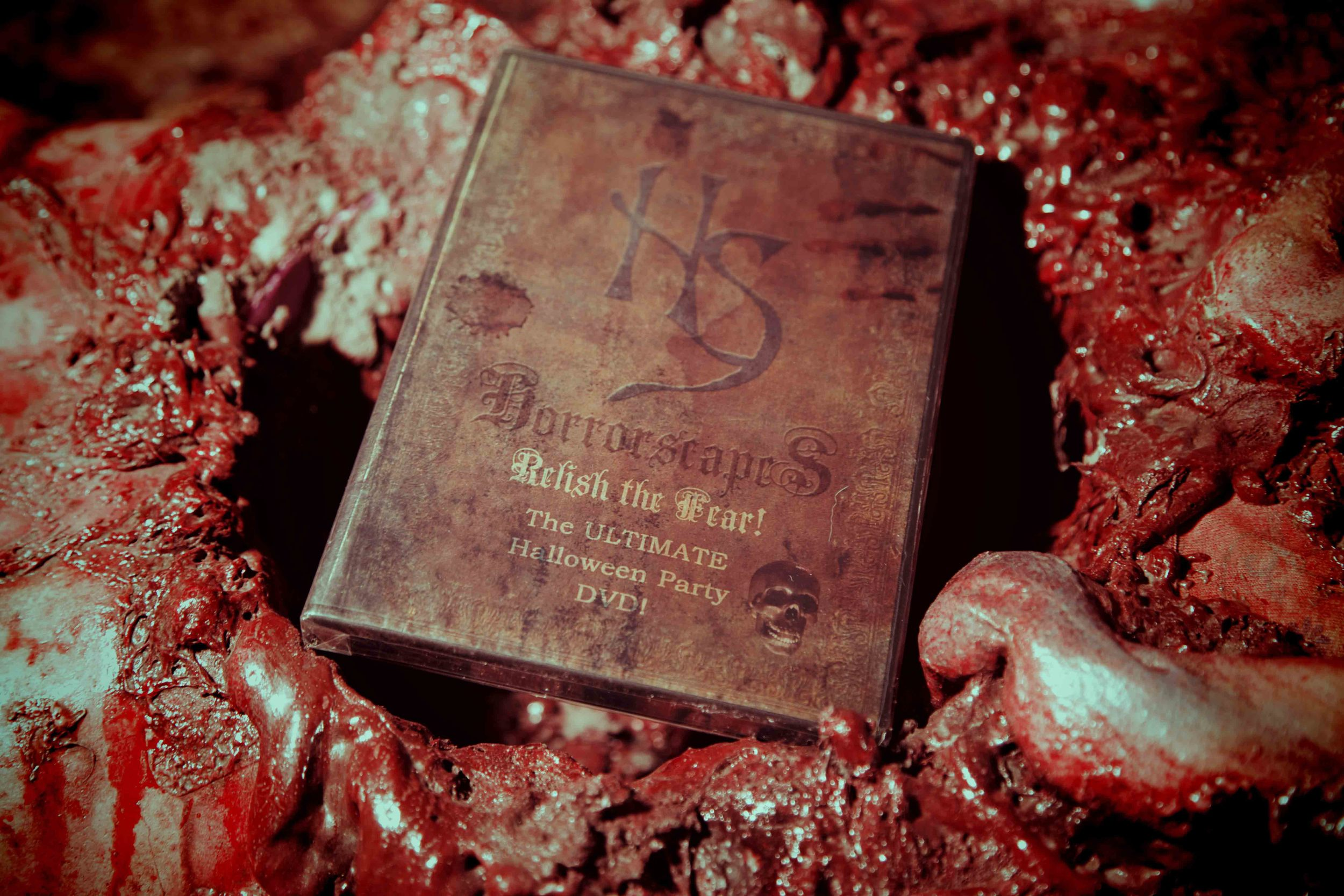 THE REEL OF HORROR - HORRORSCAPES DVD.jpg