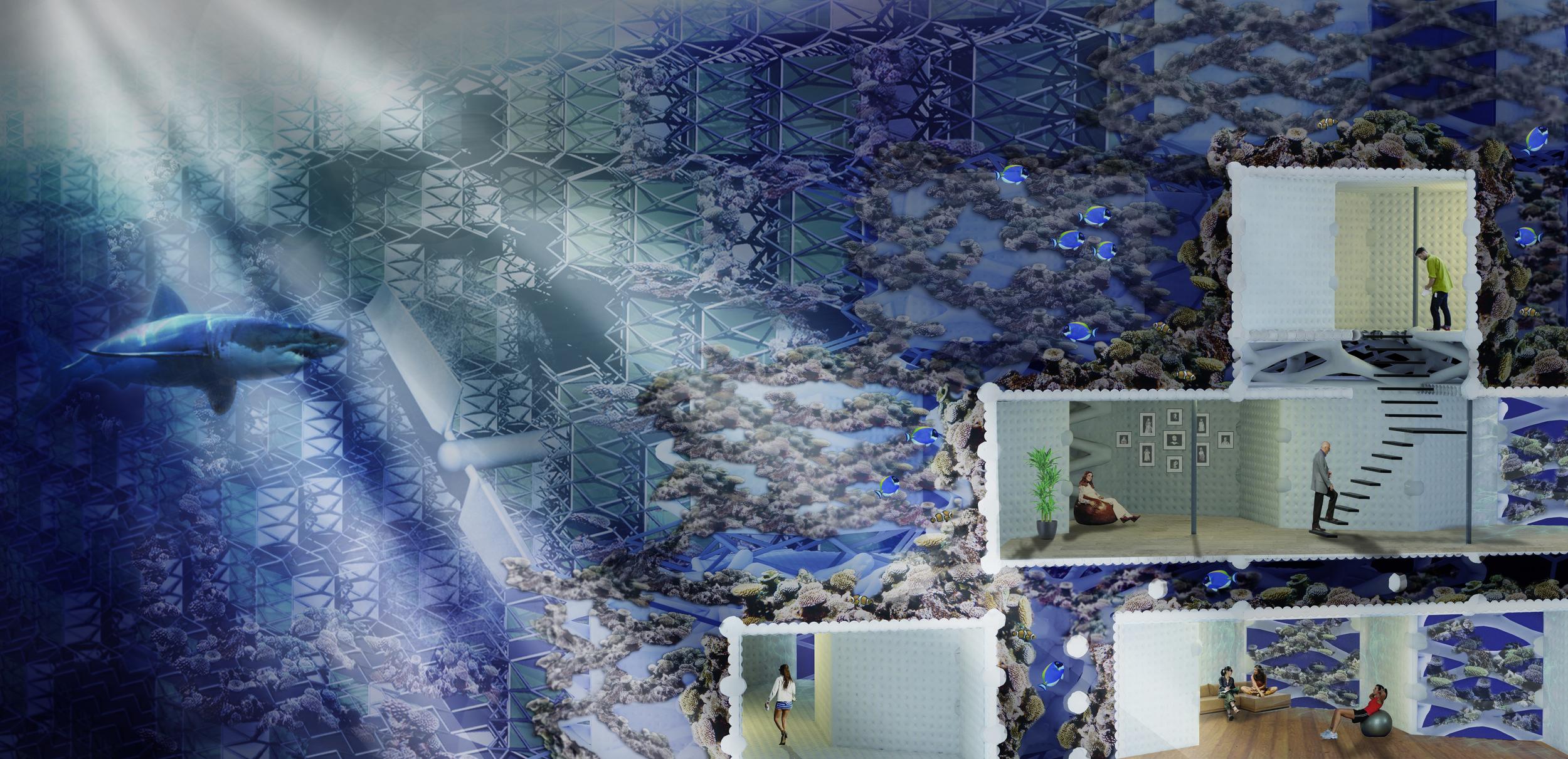 01_Reef City.jpg